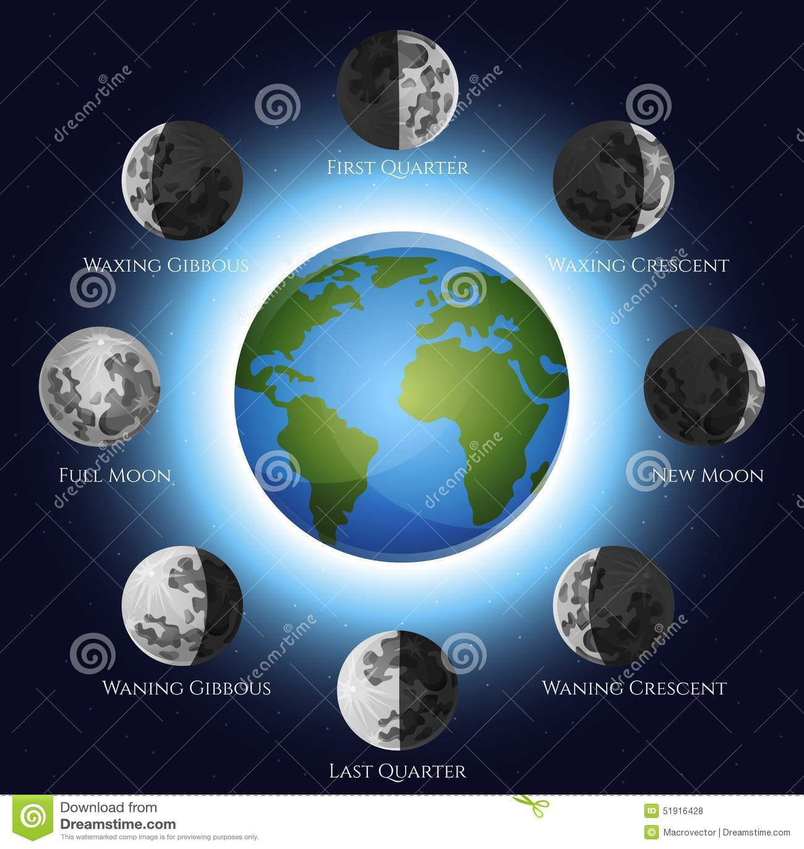 Moon Calendar Illustration : Moon phases illustration stock vector of