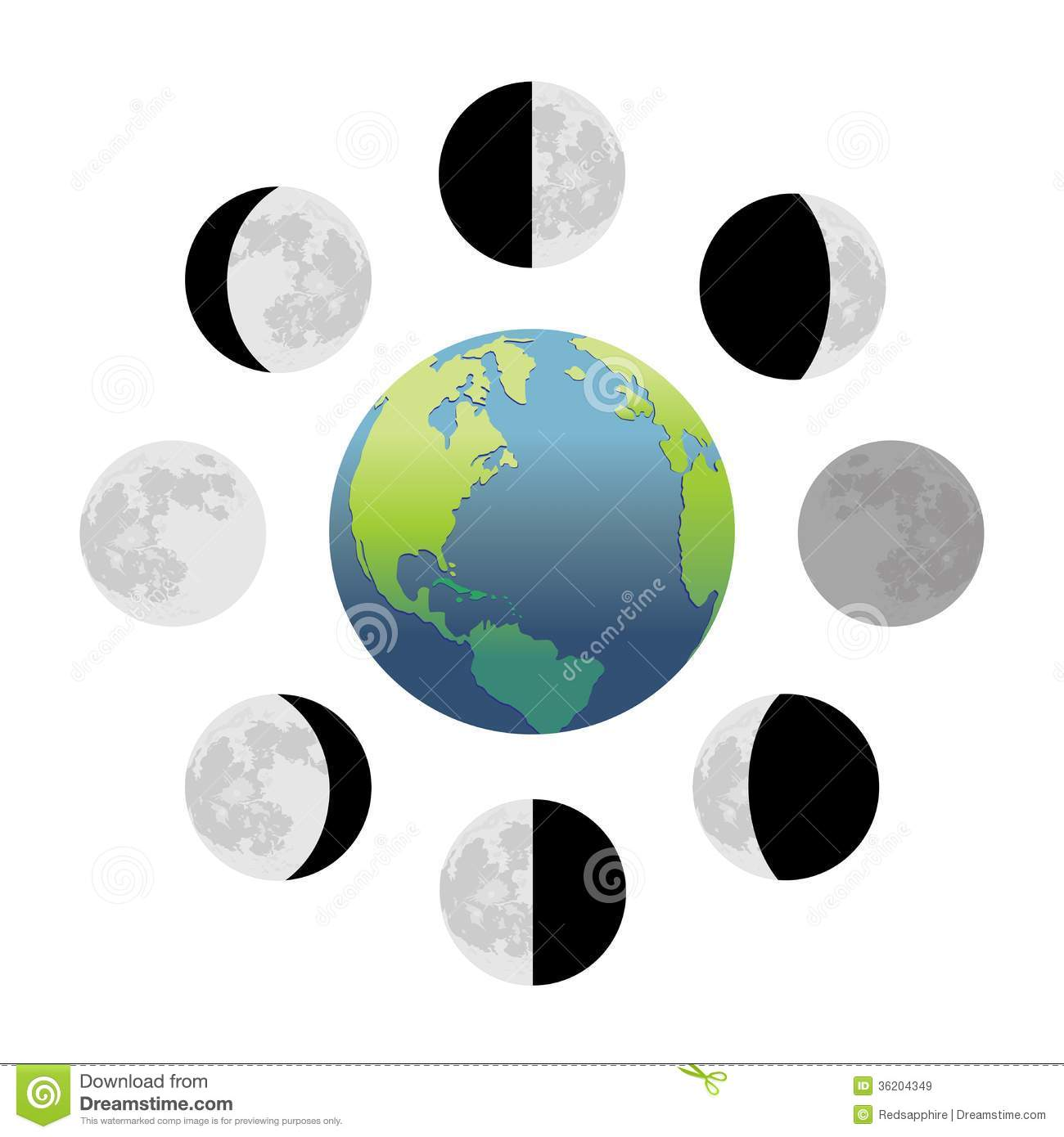 moon phases around the earth - photo #20
