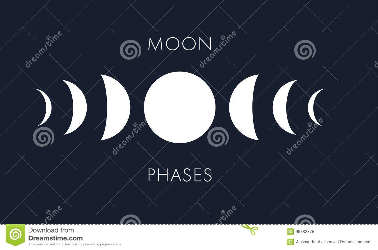 Moon Phases Vector Background Lunar Symbols Template