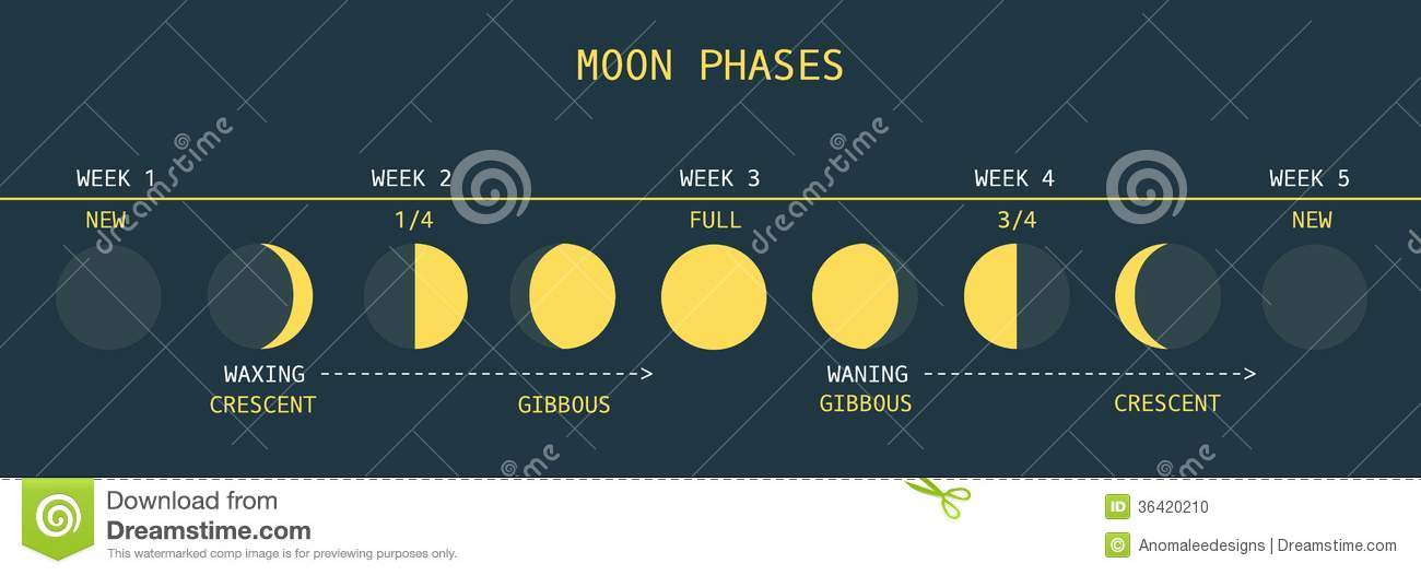 Moon phases for this week - Pictures of Space