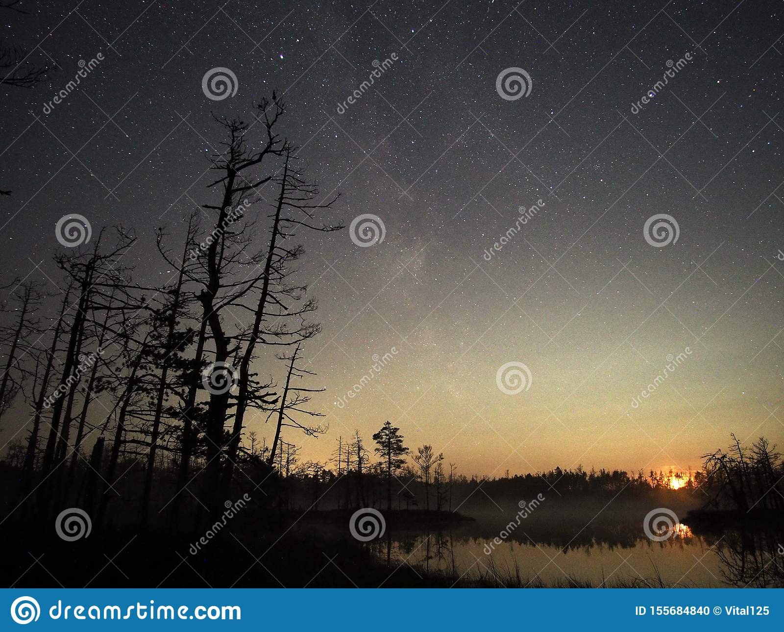 Moon set over forest lake and stars observing after sunset