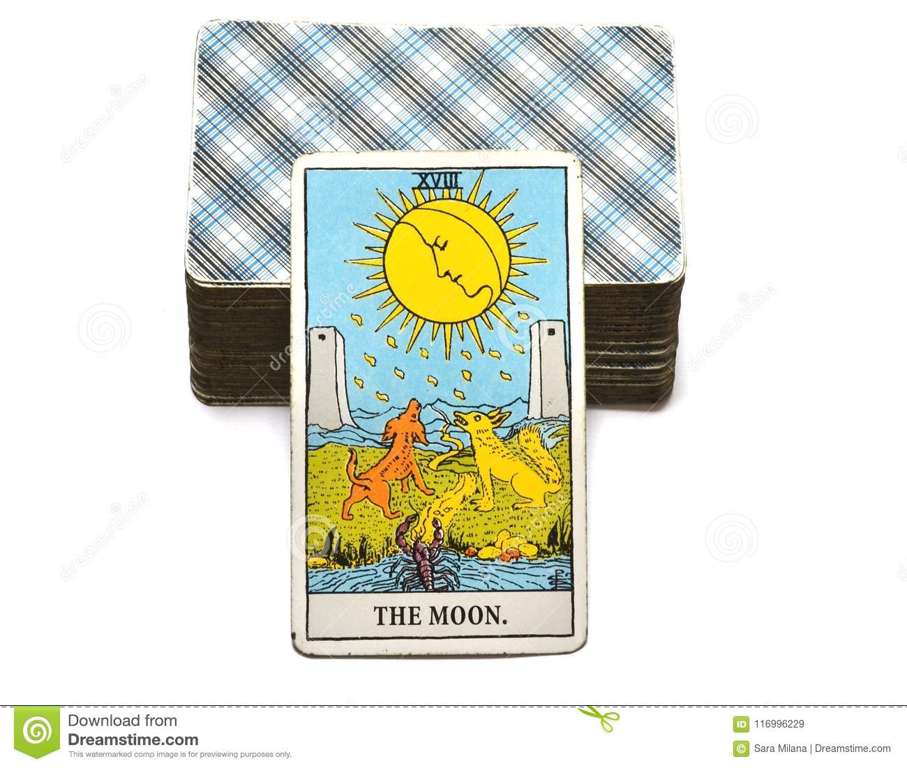 The Moon Tarot Card Dreams, Nightmares, Illusion, Hidden