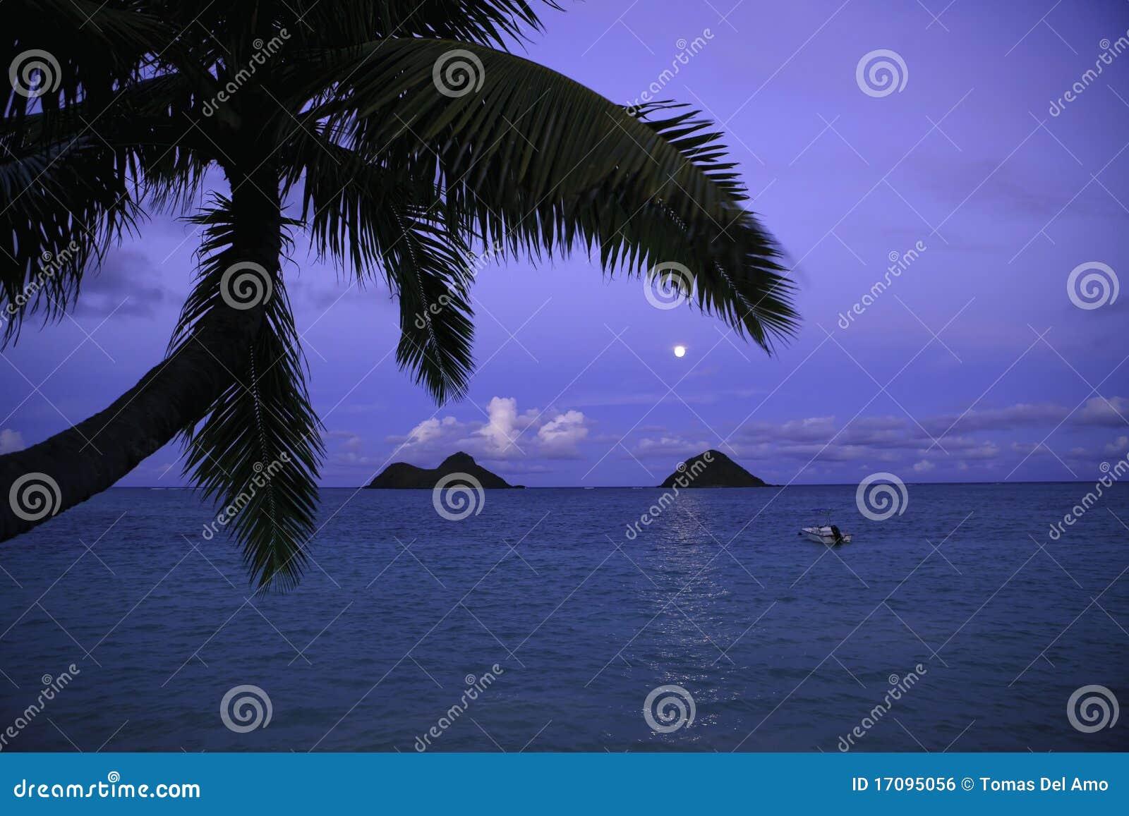 Moonrise in Hawai