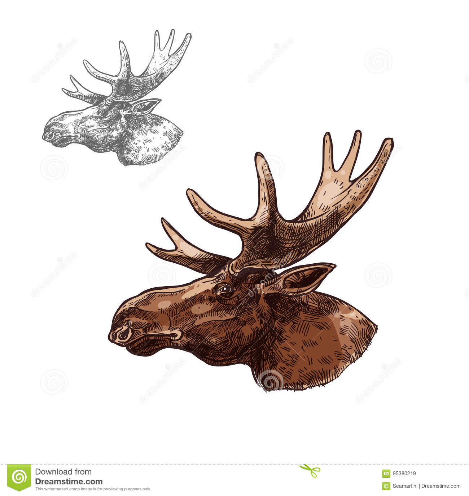 Elk Head Profile