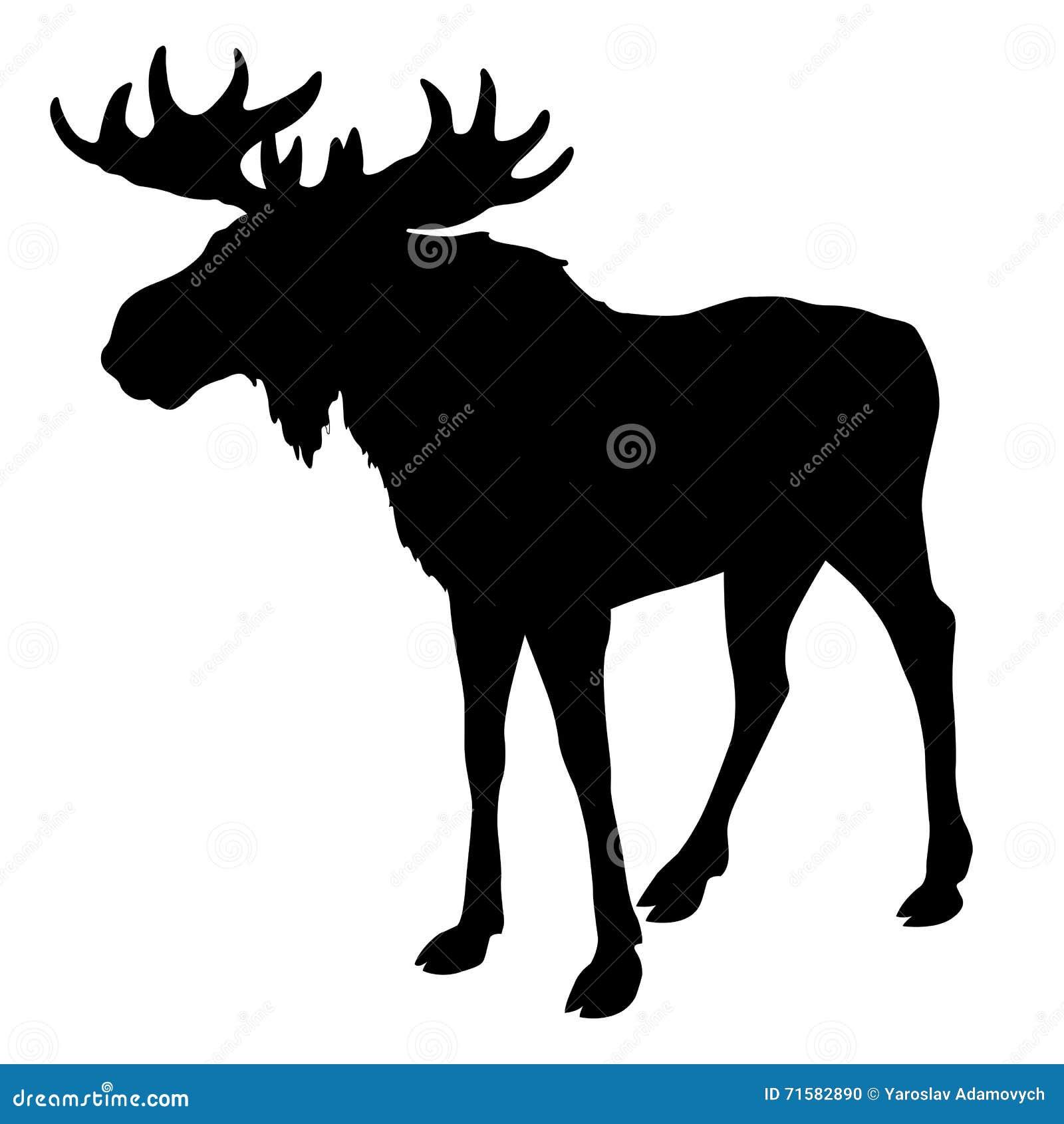 silhouette of moose stock photo  image  - moose silhouette black stock photo