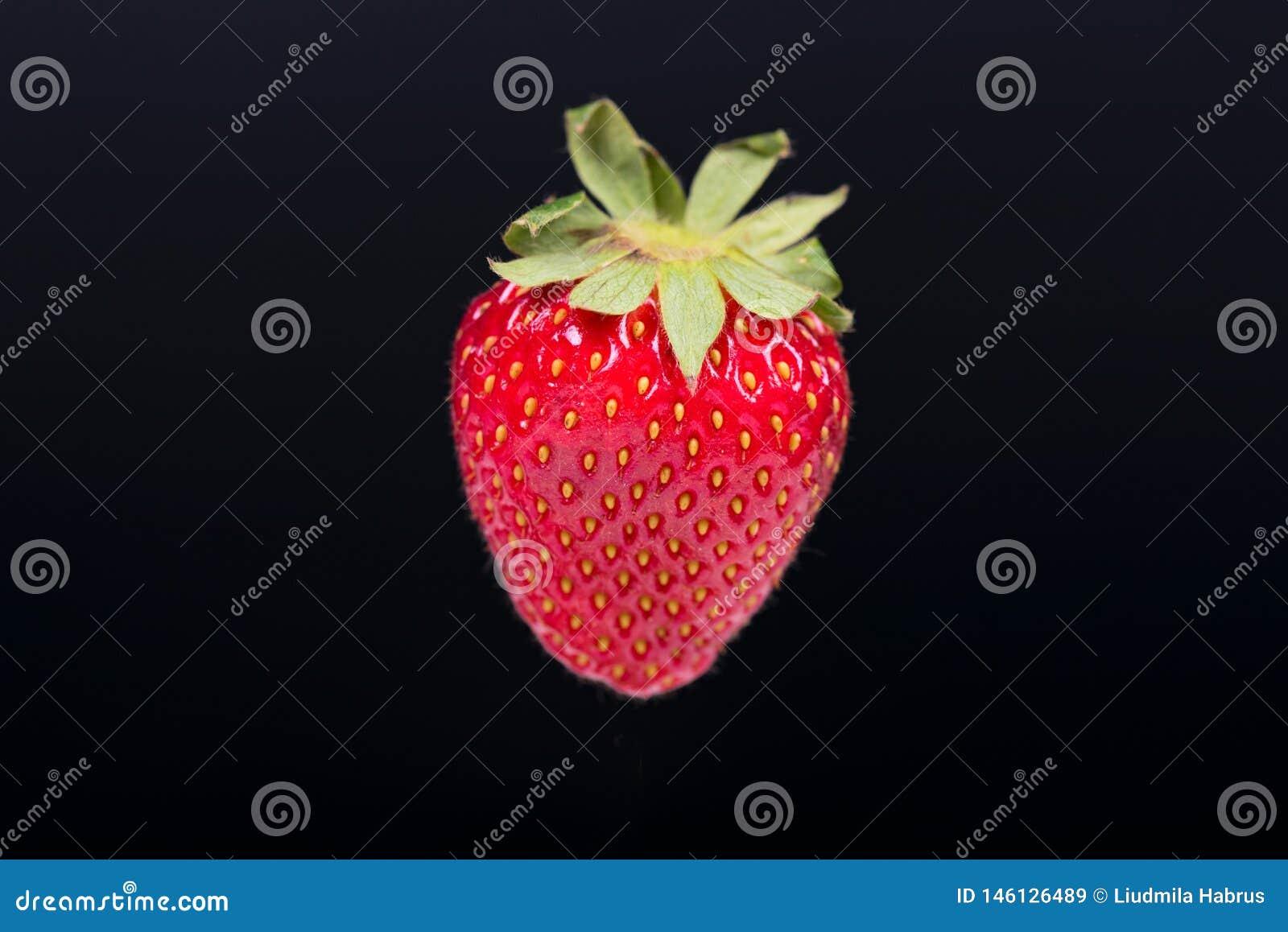 Morango madura vermelha em um fundo escuro sem uma sombra