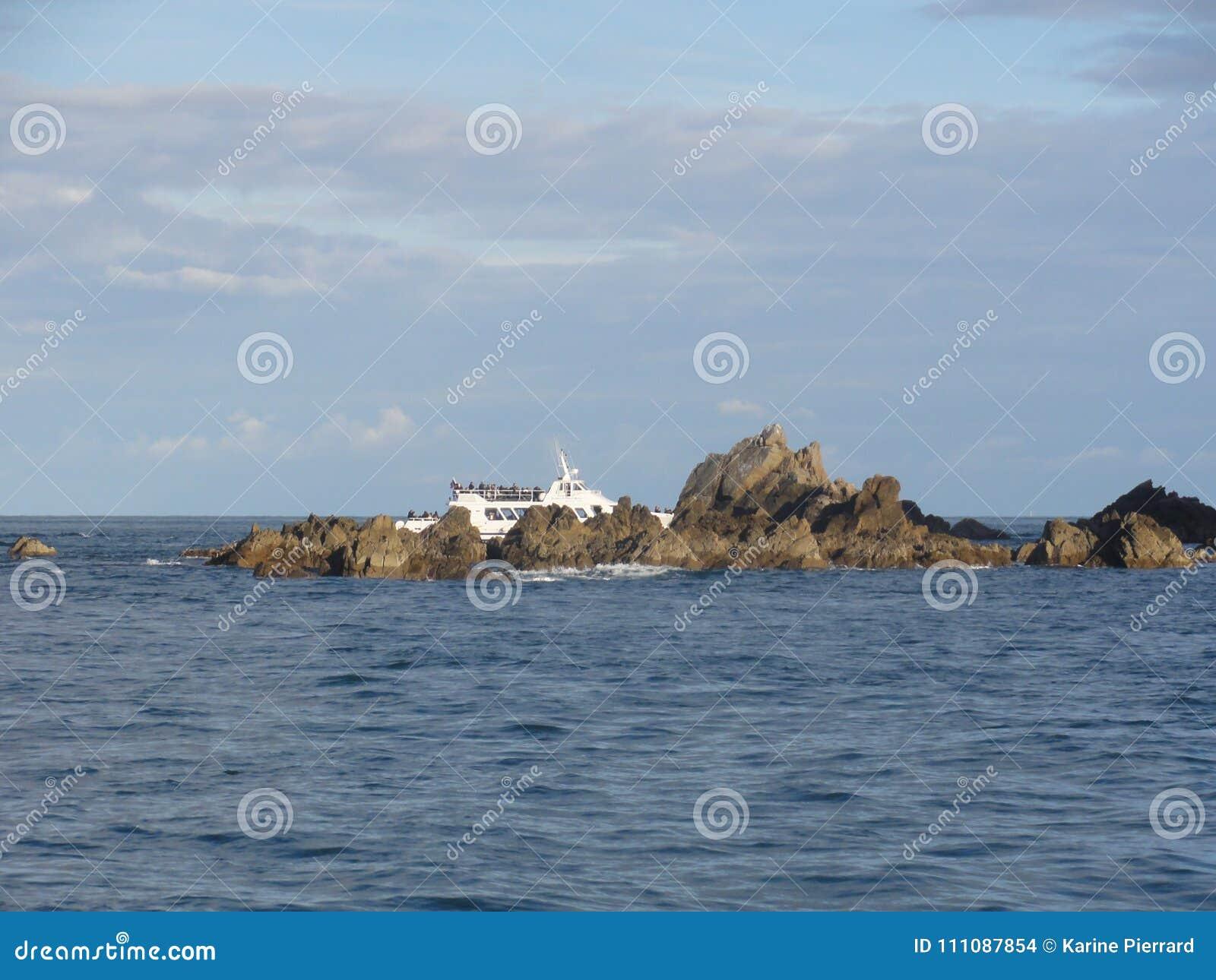 Morbihan - das Ile Zusatz-Oiseaux und Boot