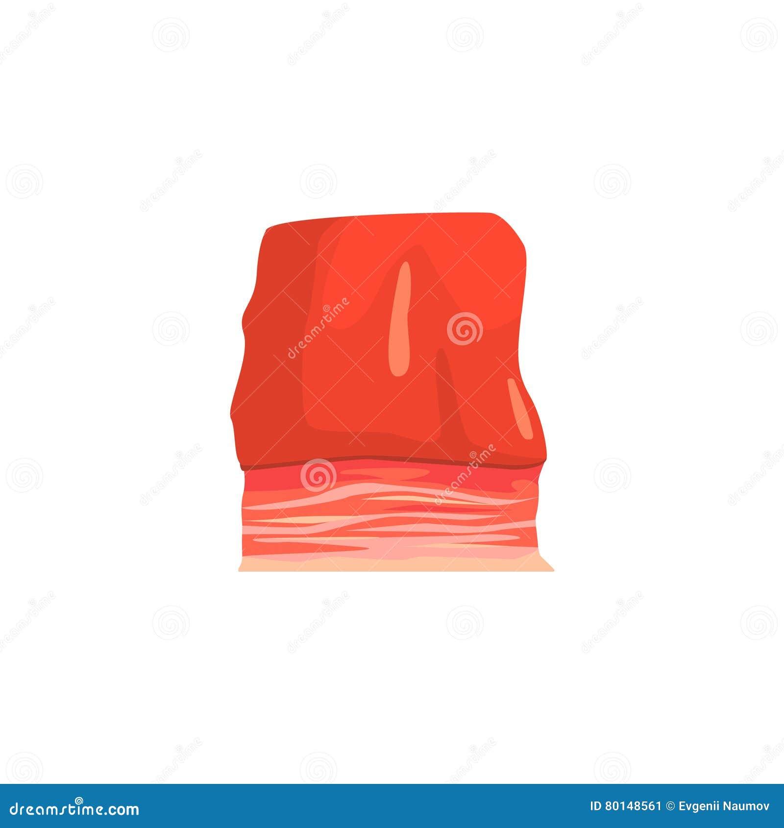 Morceau d illustration colorée de poitrine