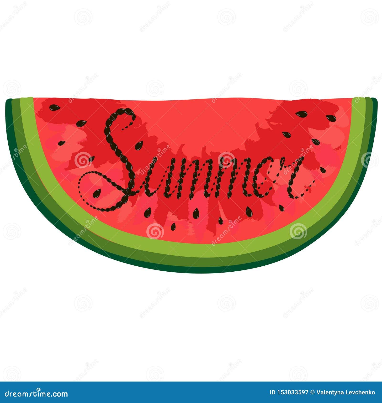 Morceau d isolement de pastèque rouge d aquarelle marquant avec des lettres avec l été à l intérieur du mot