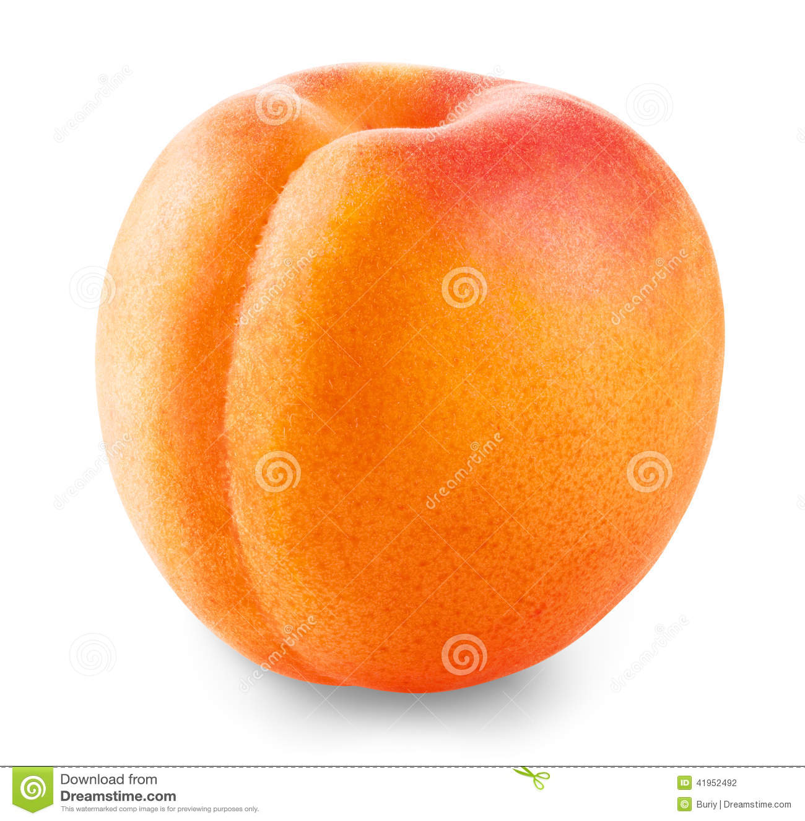 Morelowa owoc