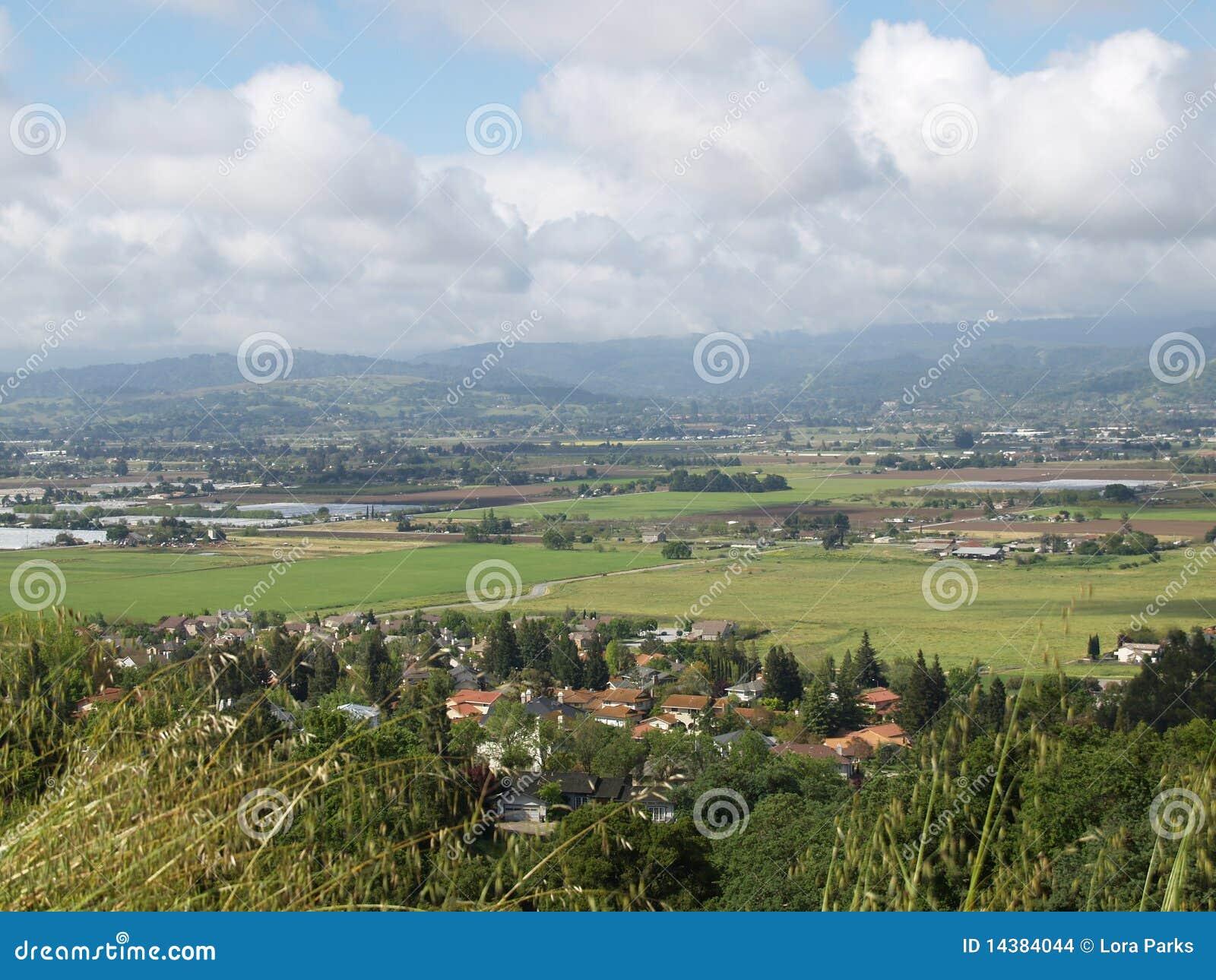 Morgan Hill landscape
