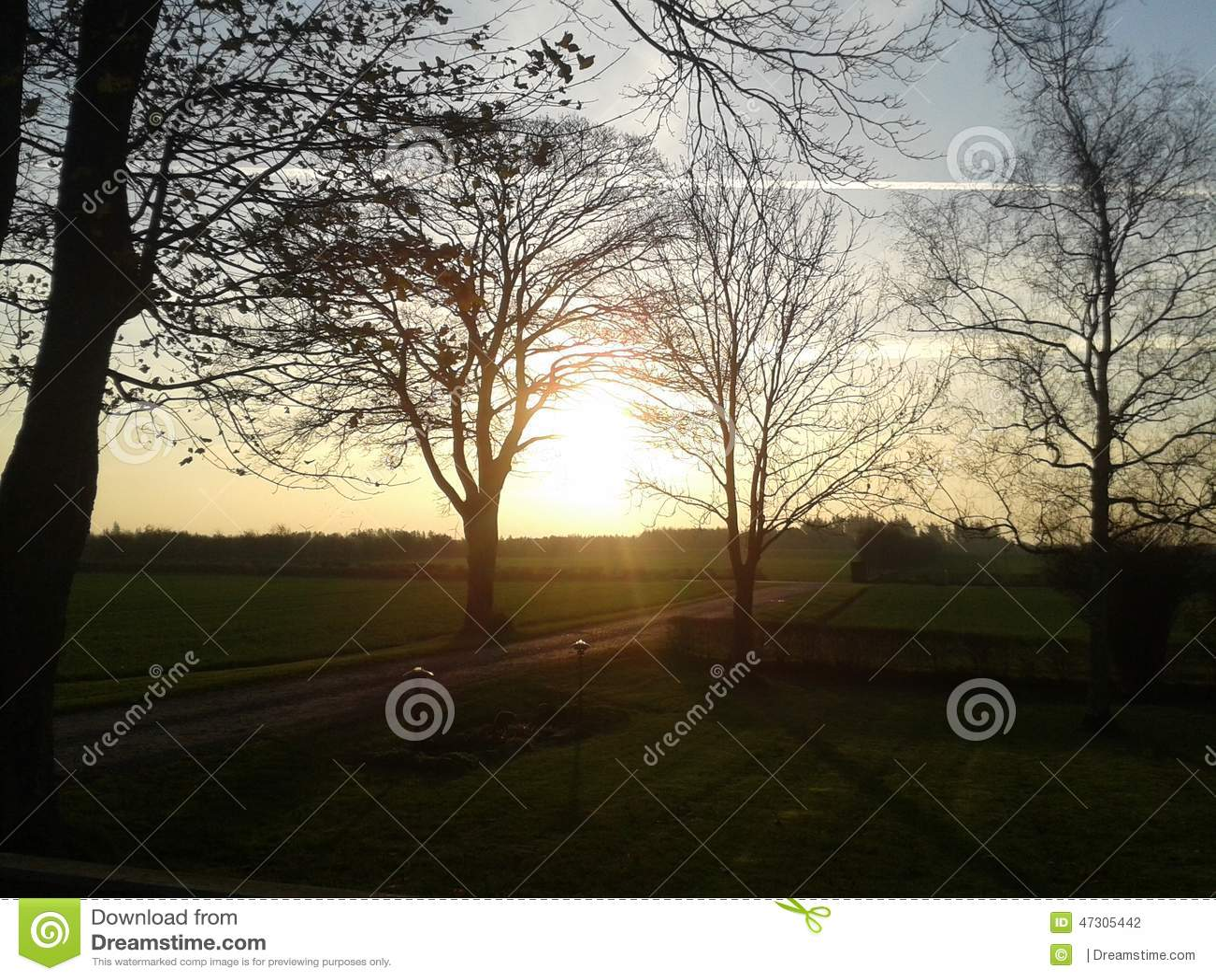 Morgen Sun
