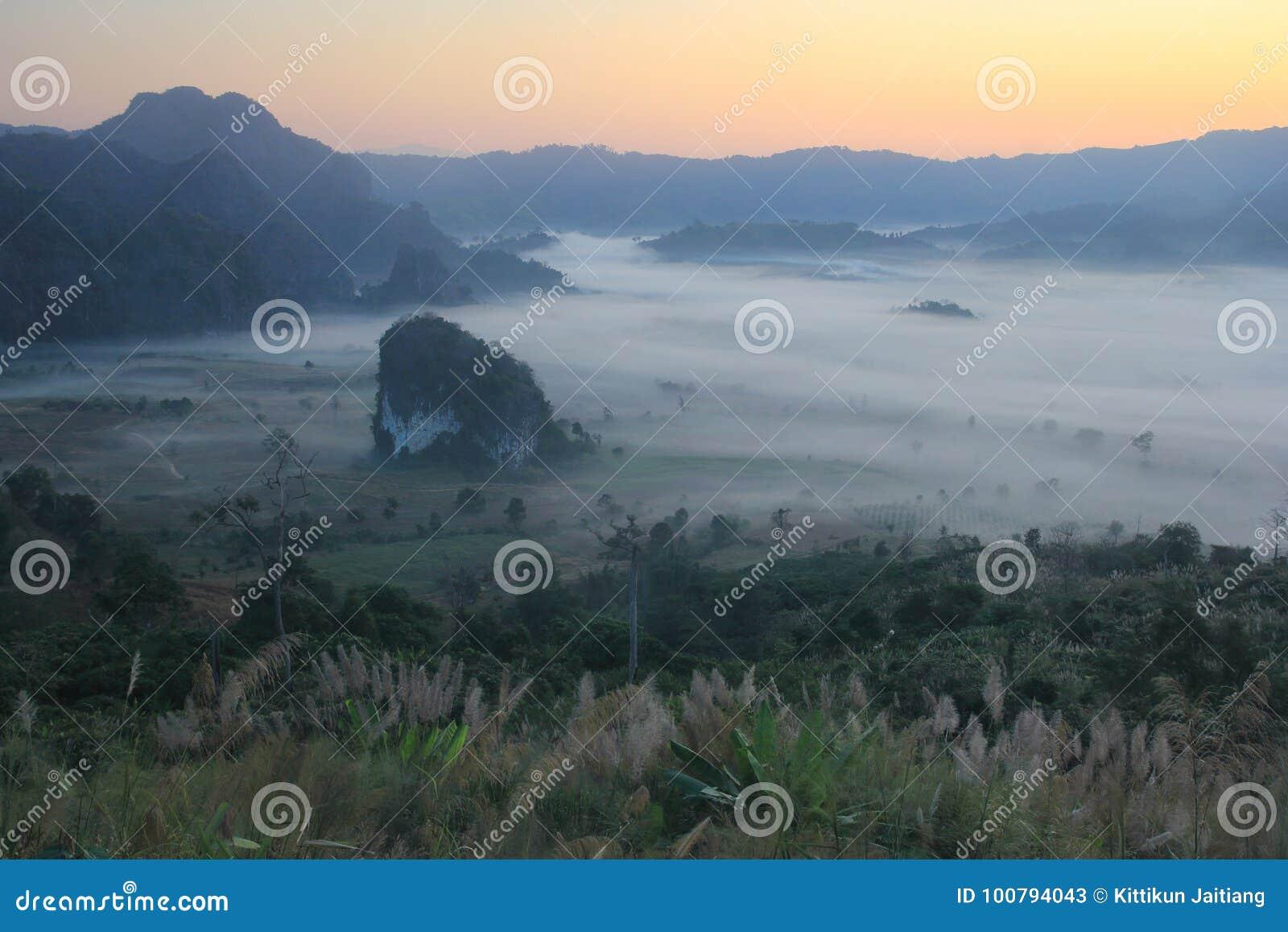 Morgenhimmel und -nebel