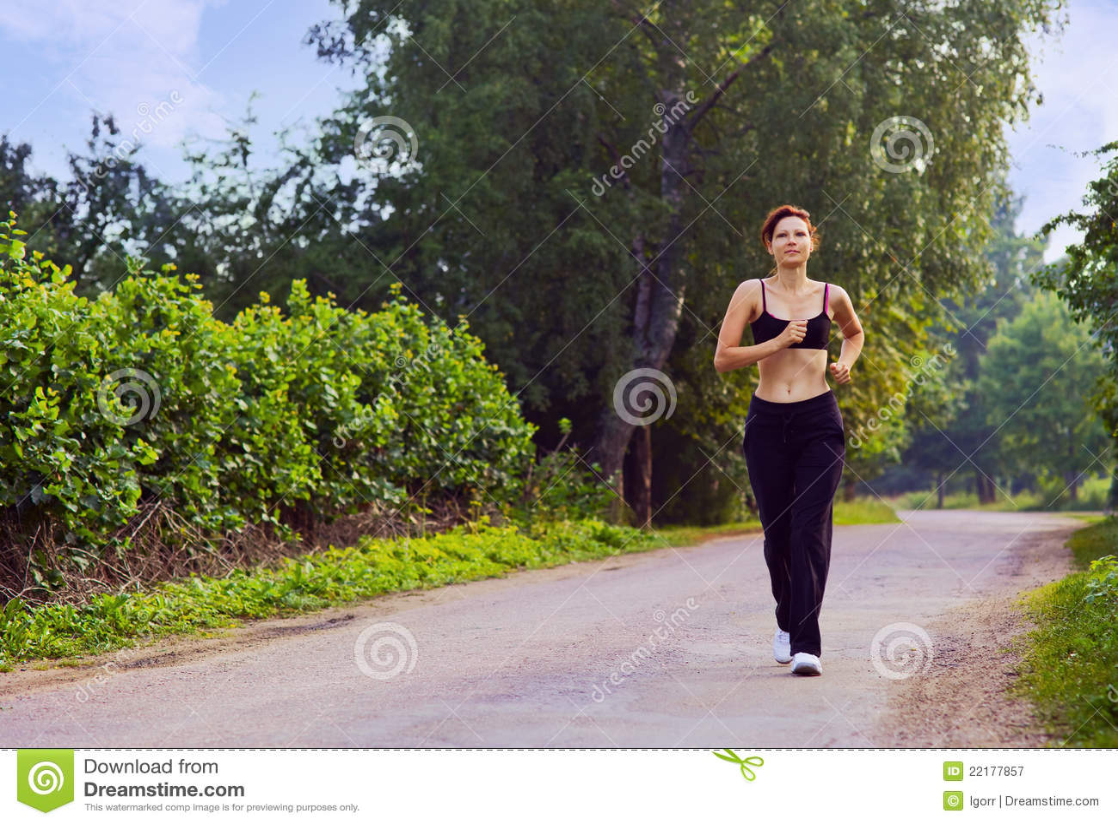 Morgenlack-läufer