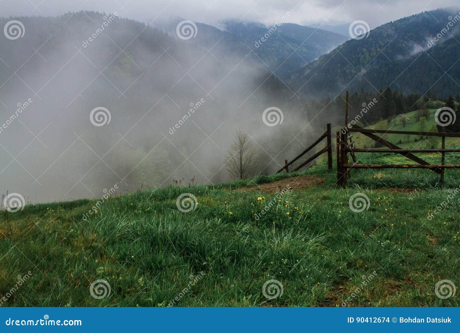 Morgentaunebel-Sonnenstrahlen in den Bergen