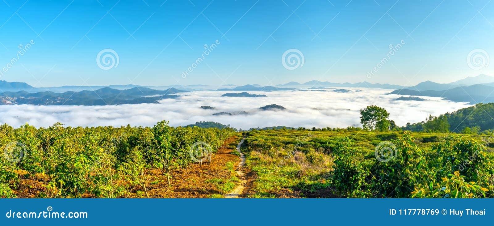 Morgon i liten stad på täckte husen för platå de dimma