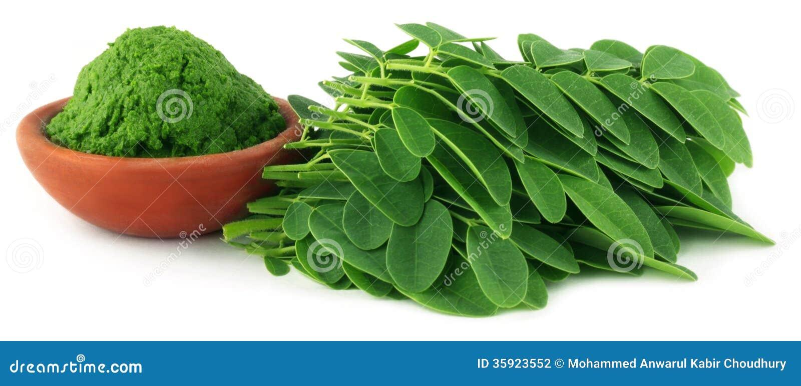 Moringa φύλλα με την κόλλα
