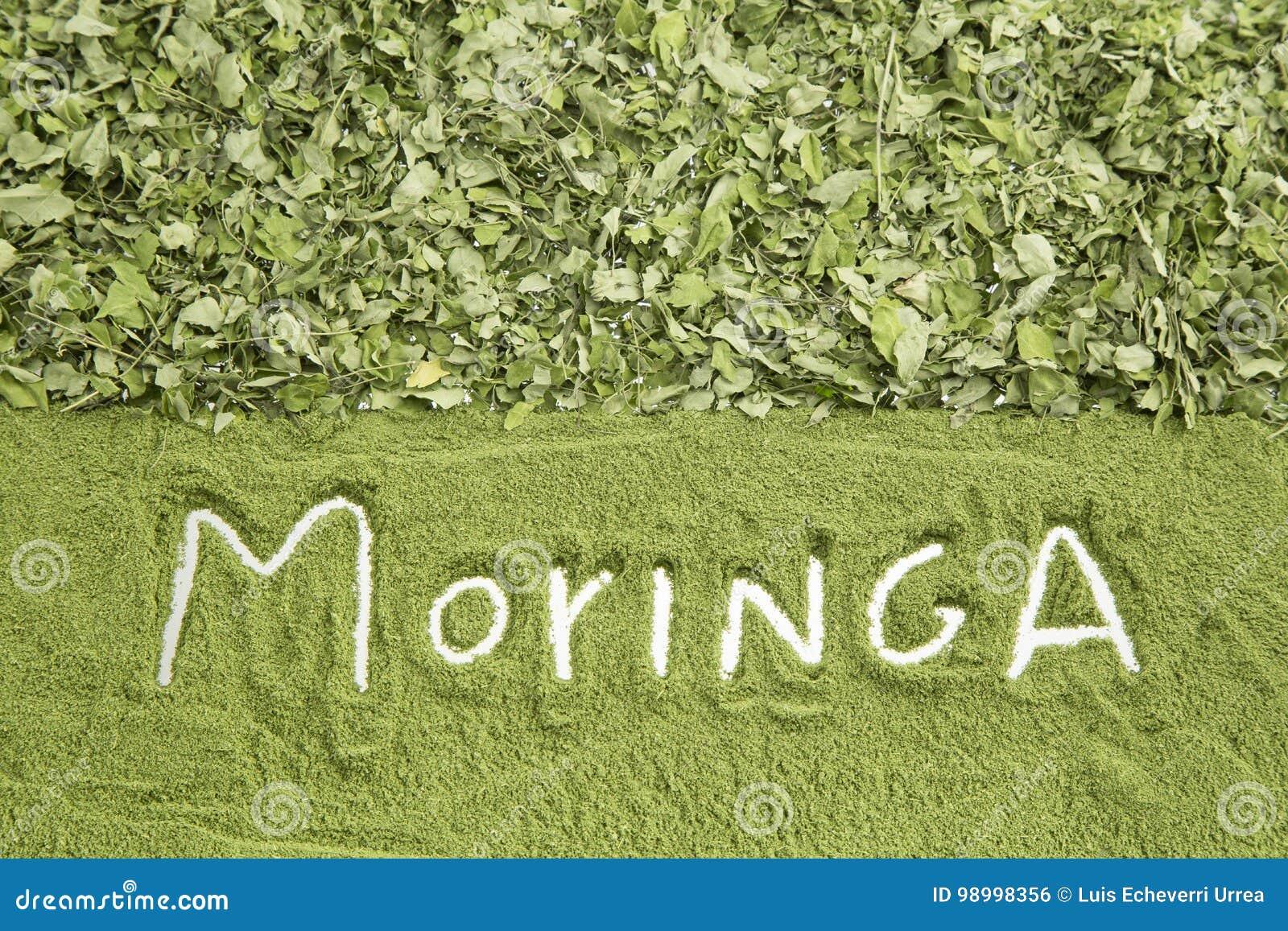 Moringa Blatter Und Staub Moringa Oleifera Stockfoto Bild Von