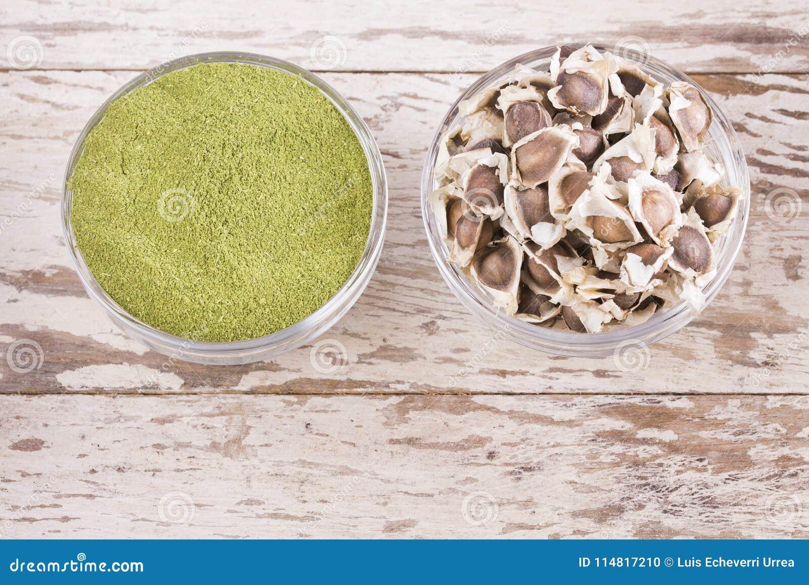 Moringa Seeds And Powder - Moringa Oleifera Stock Photo
