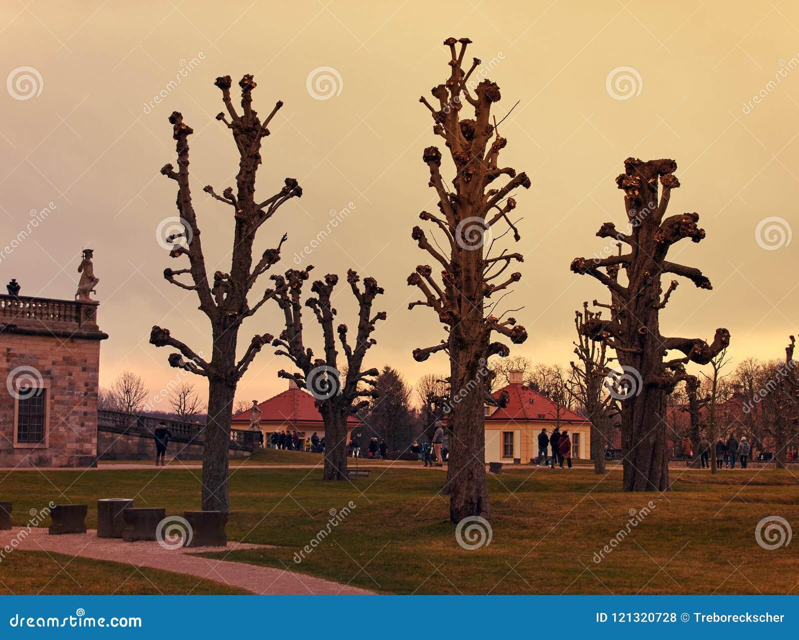 Moritzburg parkerar i aftonljuset