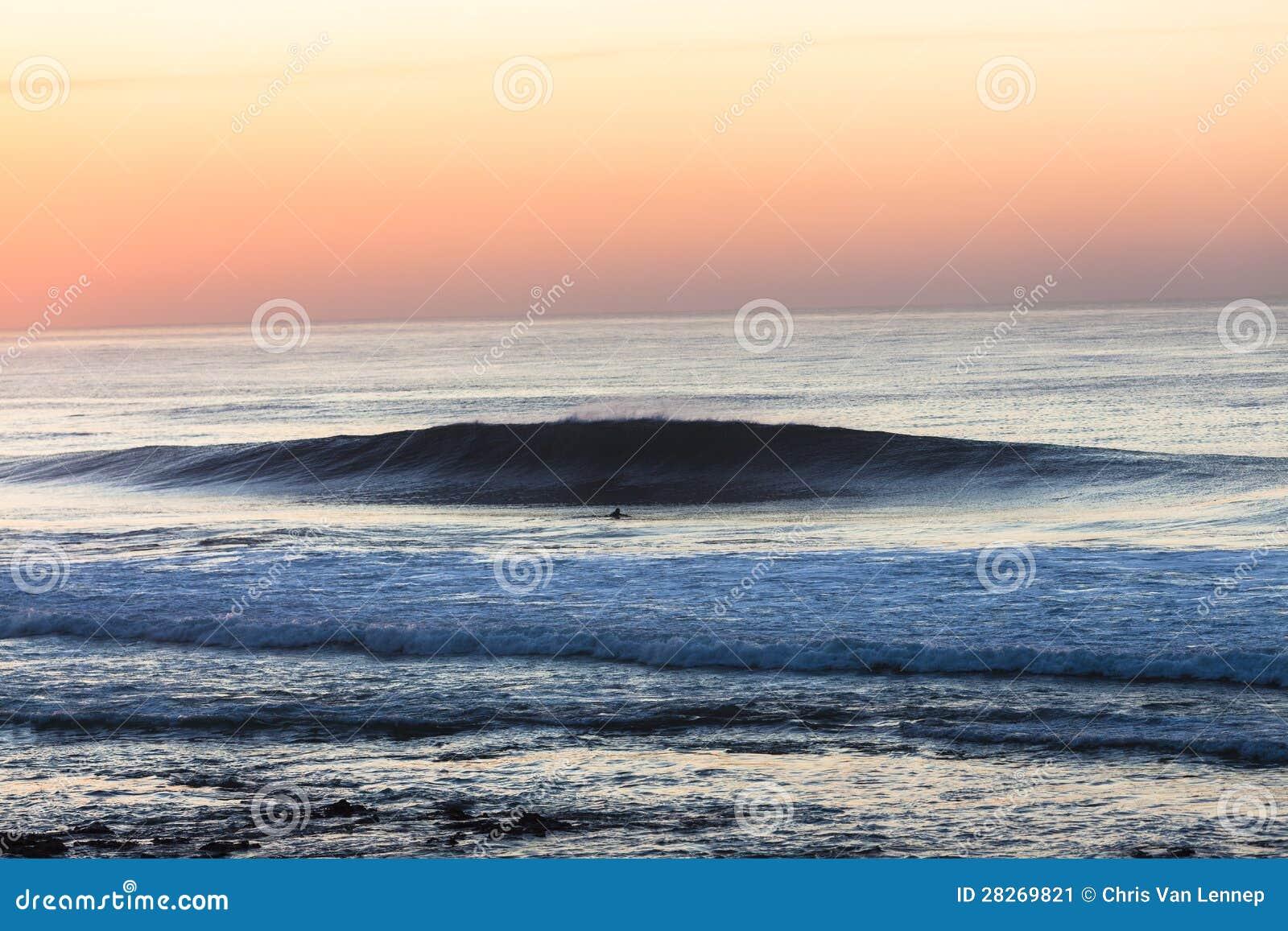 Morning Wave Surfer