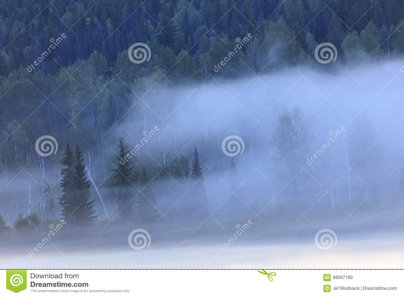 Morning mist stock photo  Image of natural, background - 98567190