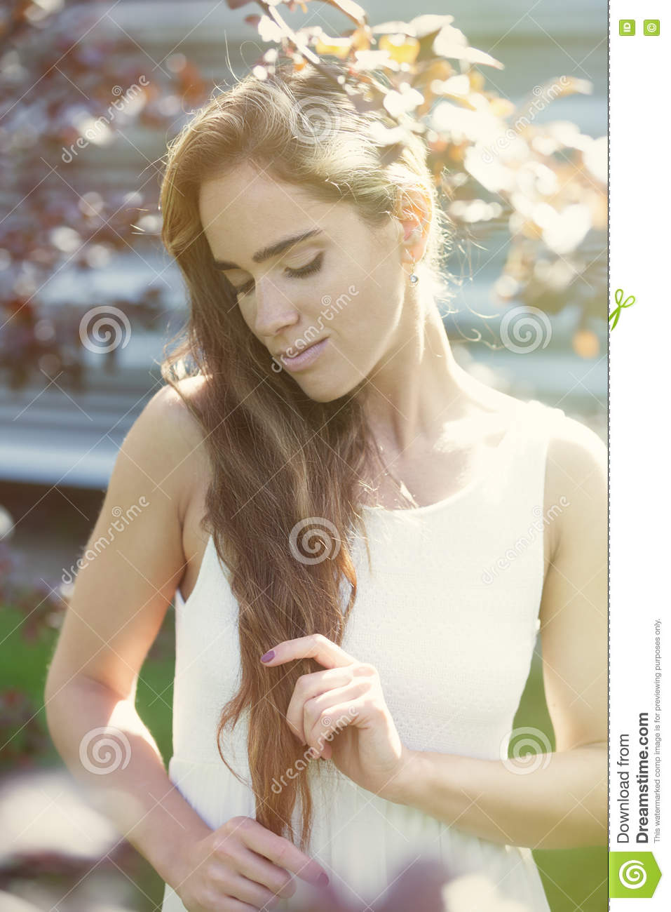 Download Morning in the park stock photo. Image of brown, attractive - 77041832