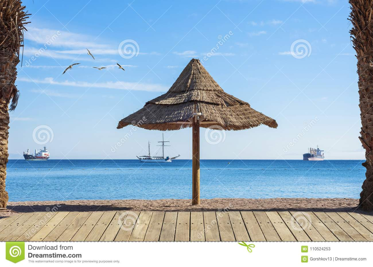 Morning on sandy beach in eilat israel stock image image of download morning on sandy beach in eilat israel stock image image of concept publicscrutiny Image collections