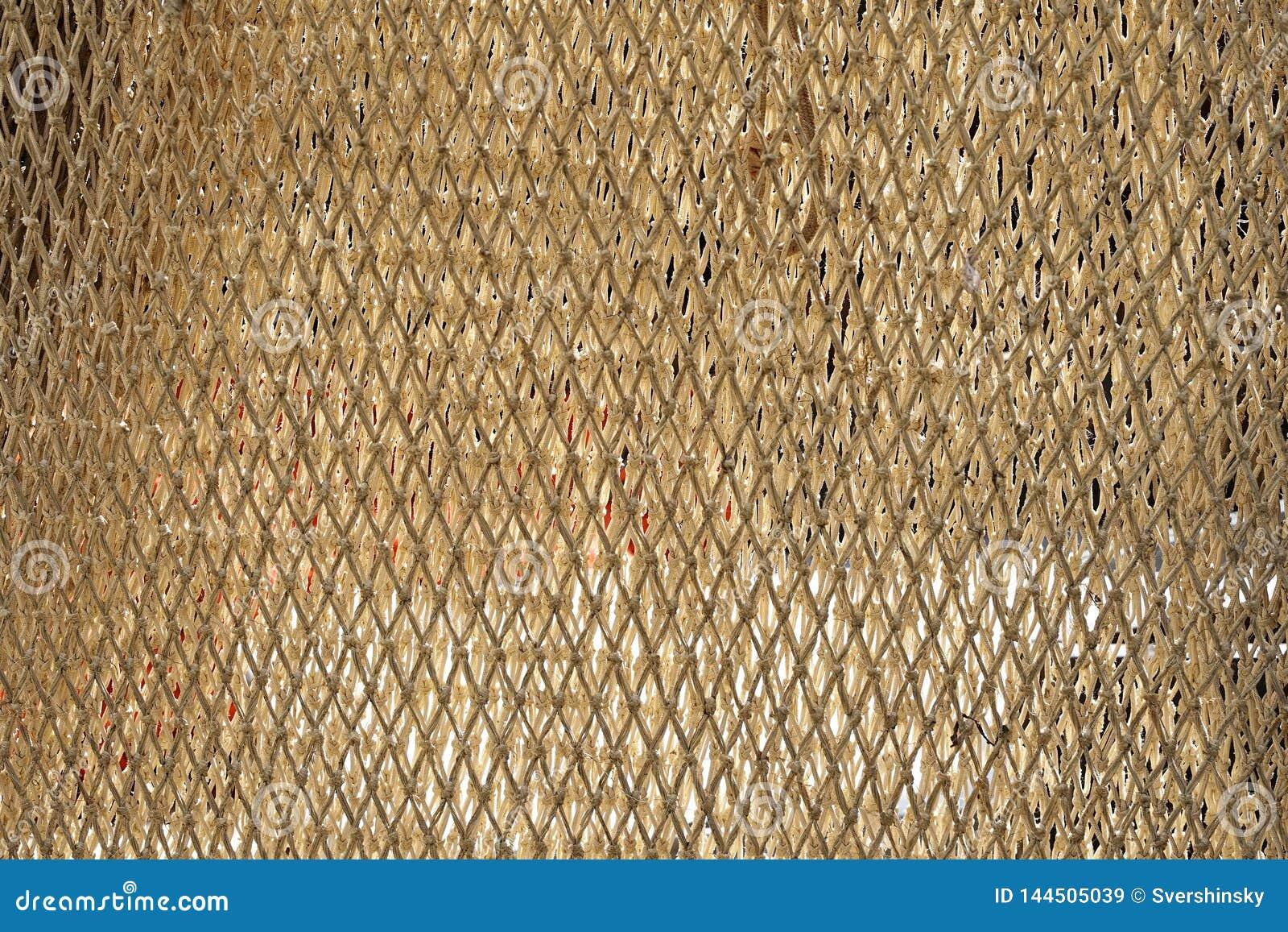 Morska sieć Tekstura sieć rybacka