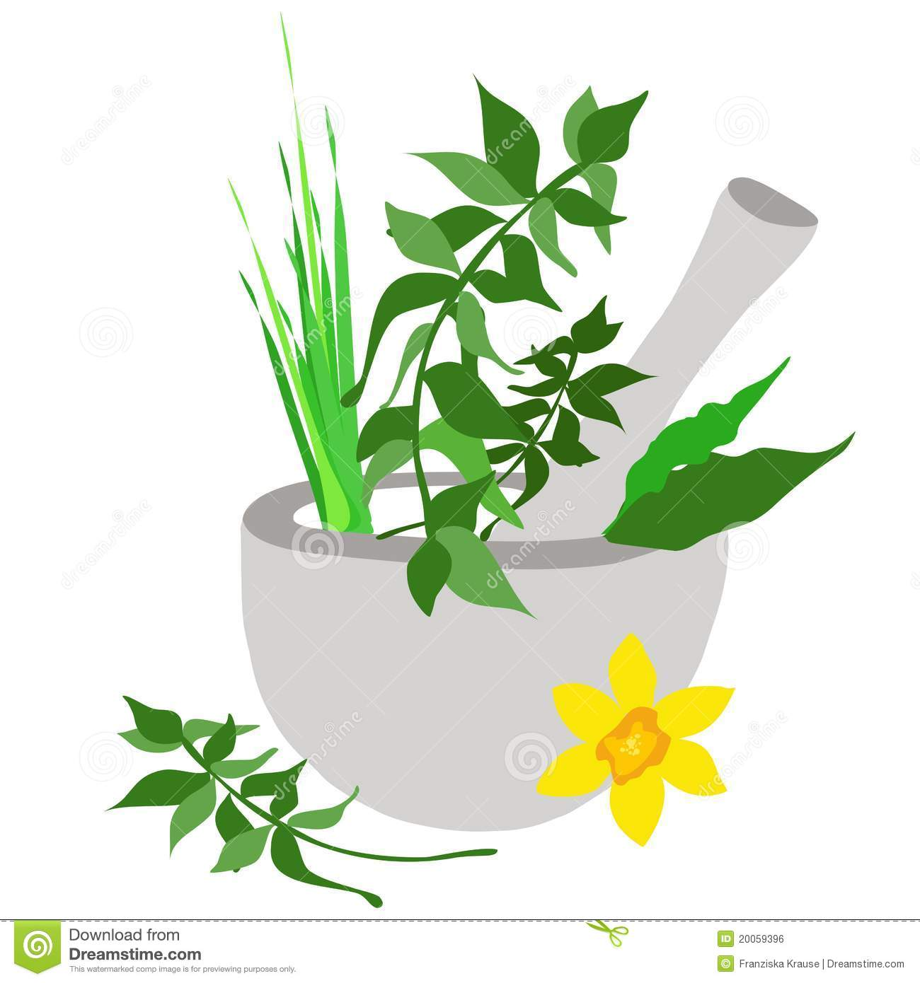 Spices Mortar and Pestle-Clip Art – Clipart Download