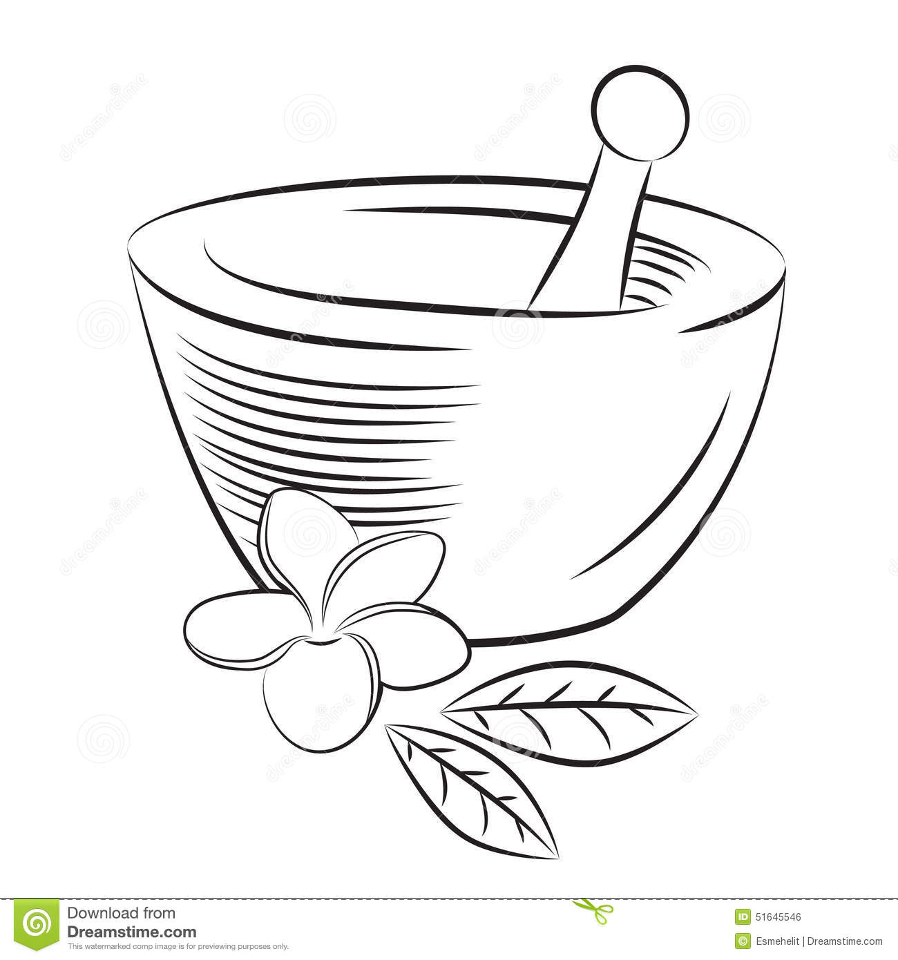 Mortar And Pestle With Frangipani Flower Graphic Style Stock ... for Mortar And Pestle Drawing  54lyp