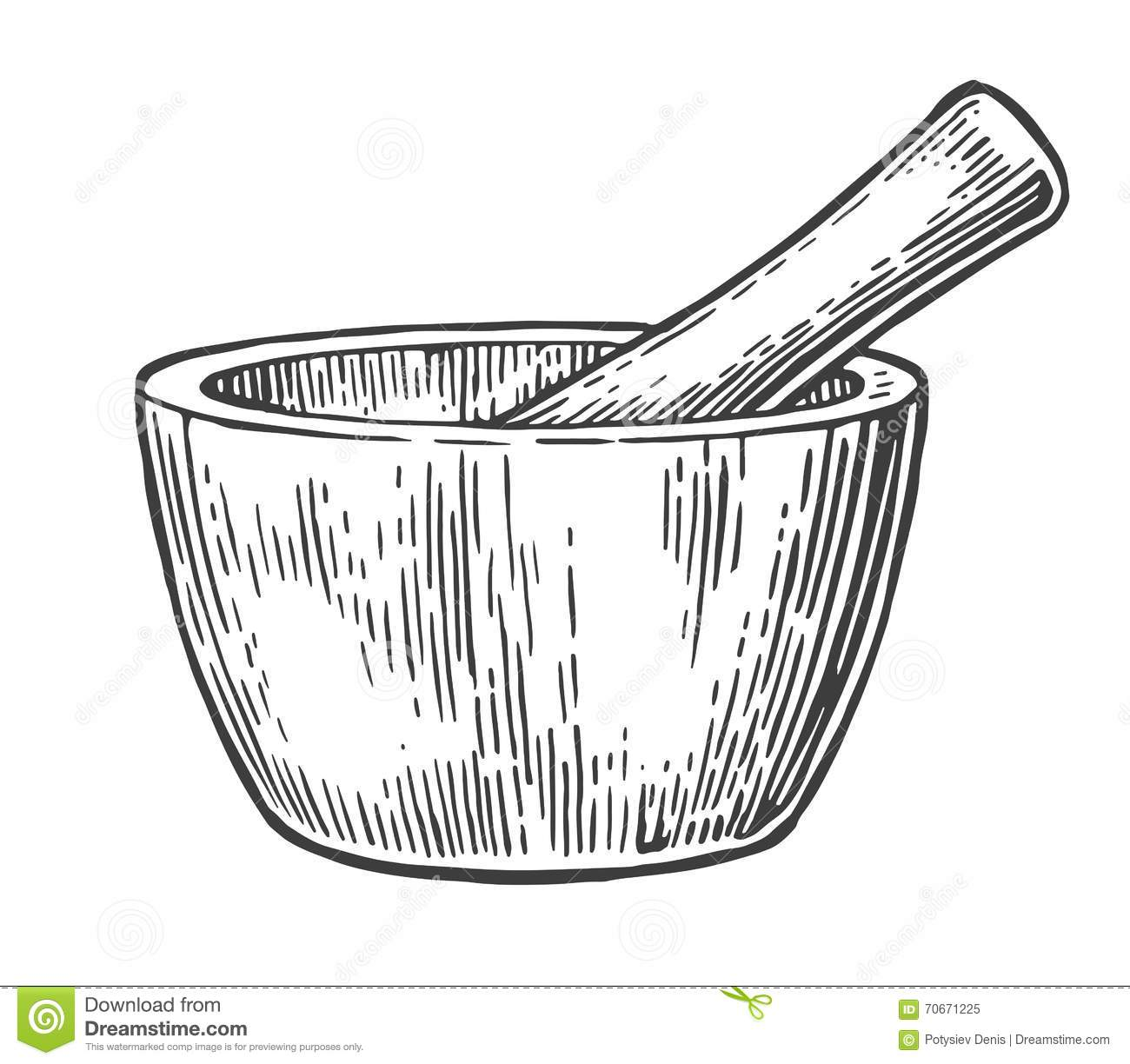 Mortar And Pestle. Vintage Vector Engraved Illustration. Stock ... for Mortar And Pestle Drawing  568zmd