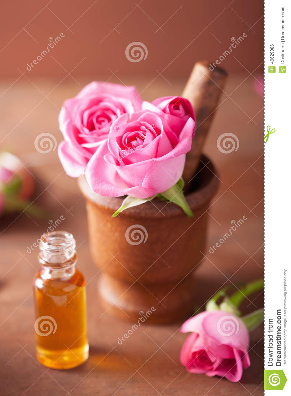 Mortar with rose flowers and essential oil for aromatherapy and stock photo image 40629086 - Rose essential oil business ...