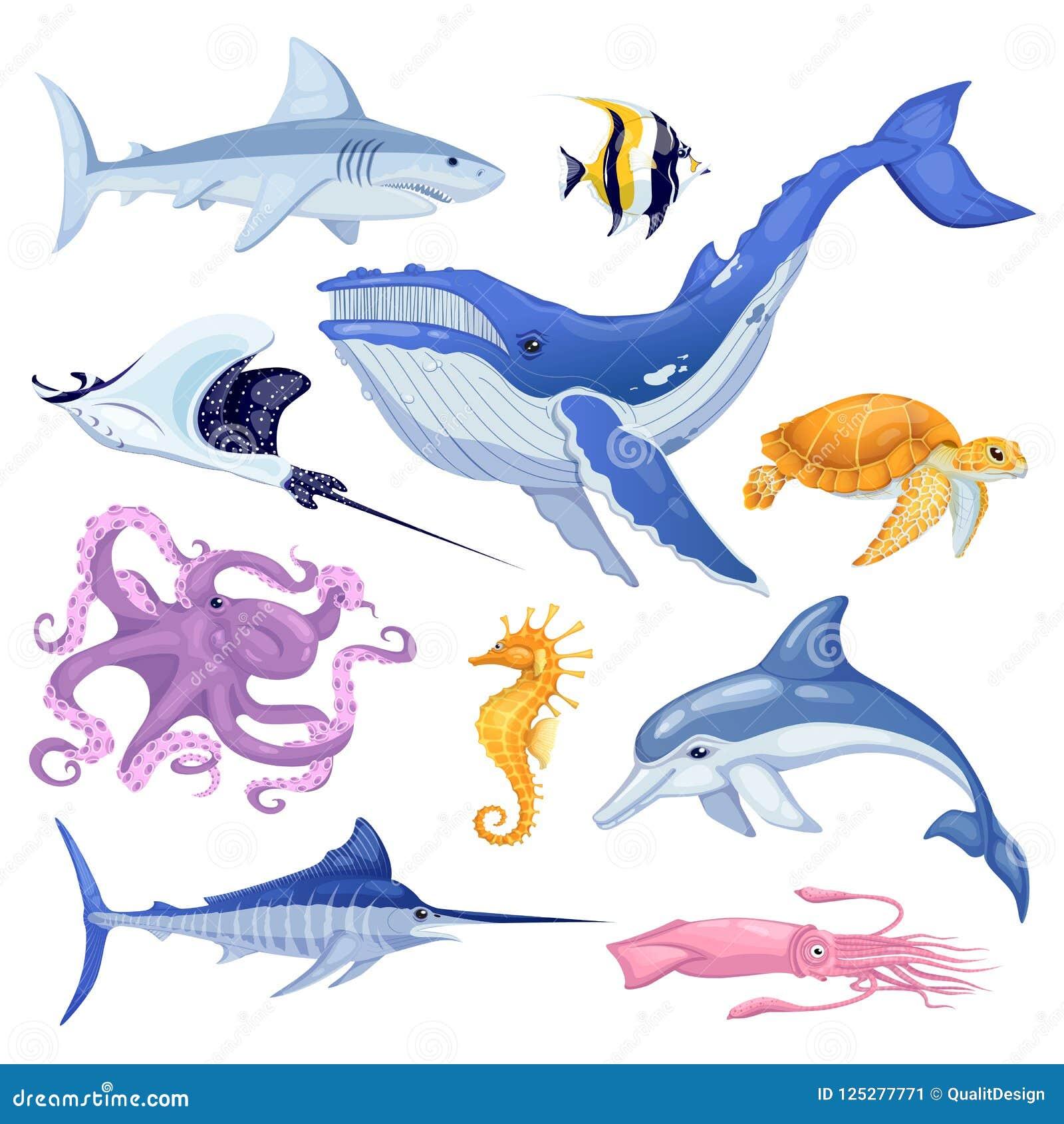 Morza i oceanu zwierzęta ustawiający Wektorowa kreskówki morskiej ryba ilustracja, odizolowywająca na białym tle