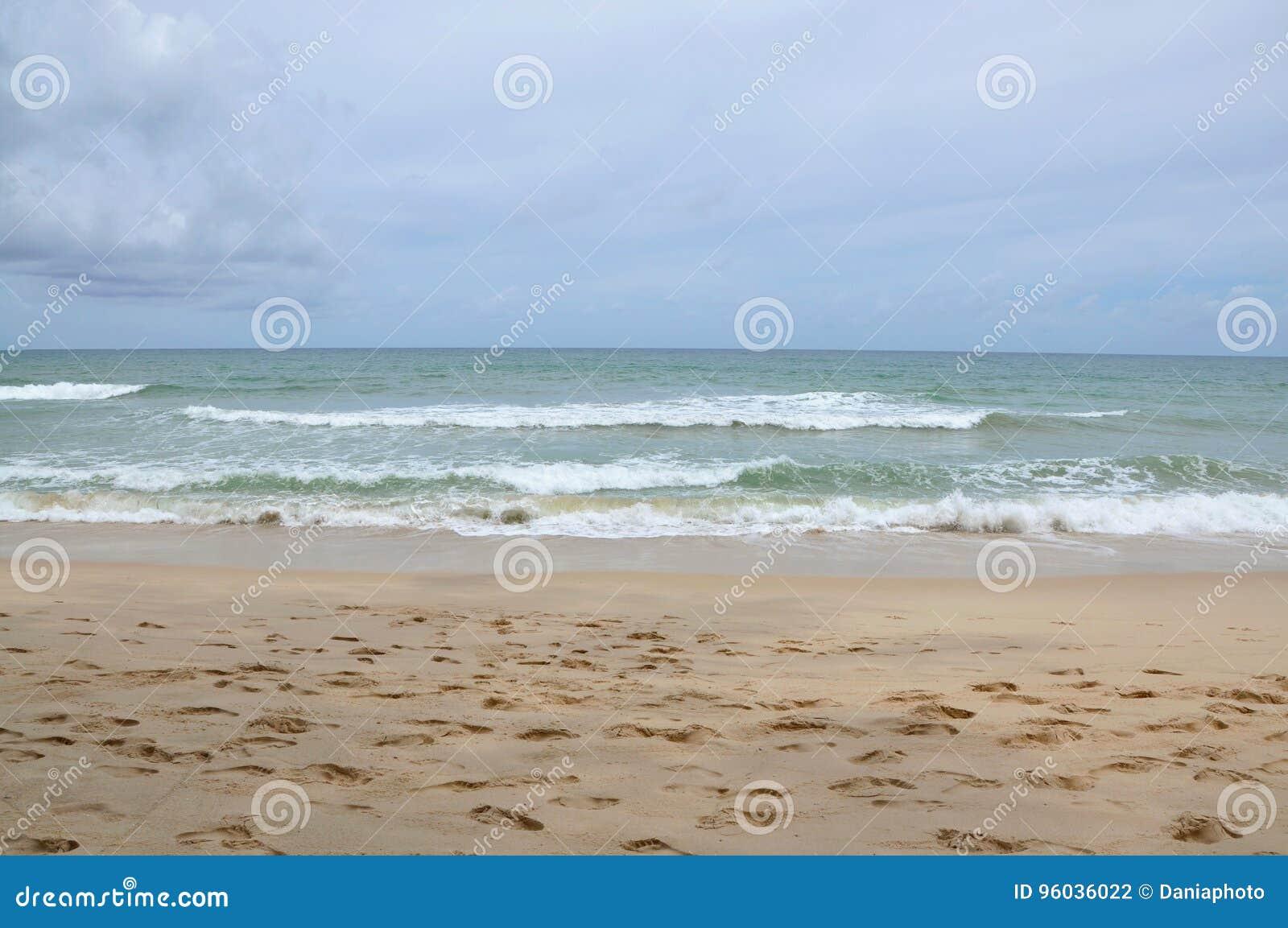 Morze fala na plaży