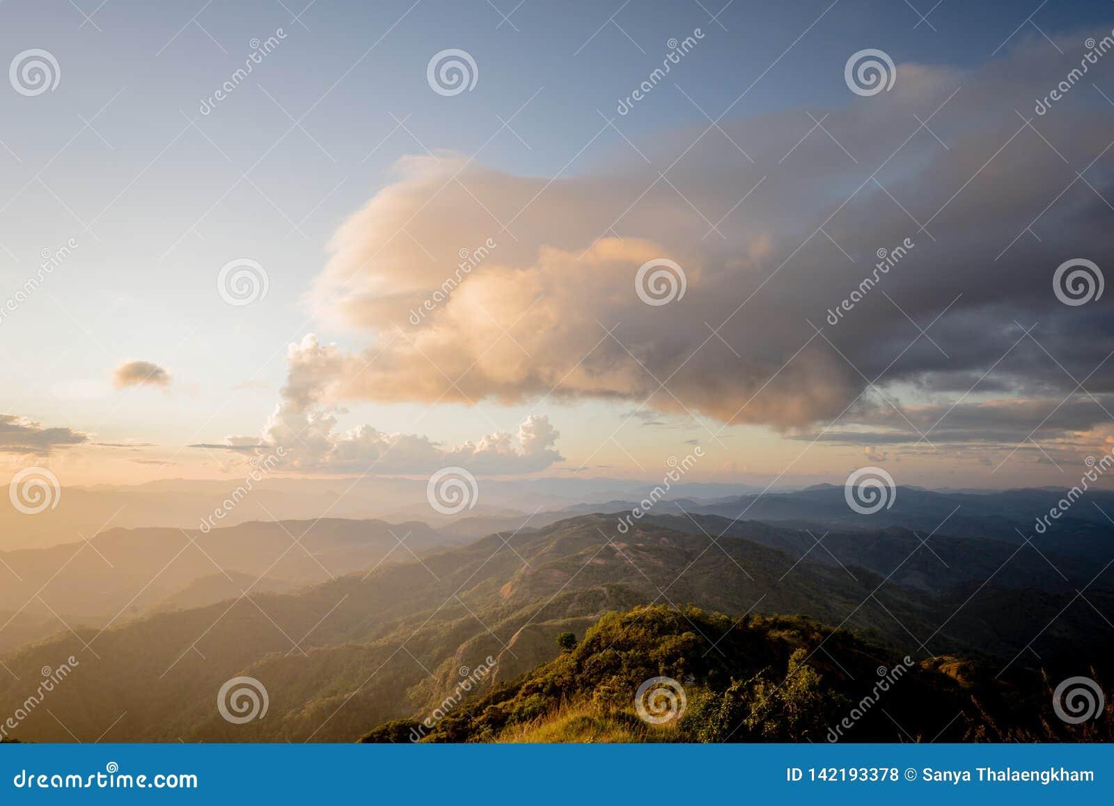 Morze mgła z lasami i góry doliną, piękny w natura krajobrazie, Doi Thule, Tak prowincja, Tajlandia
