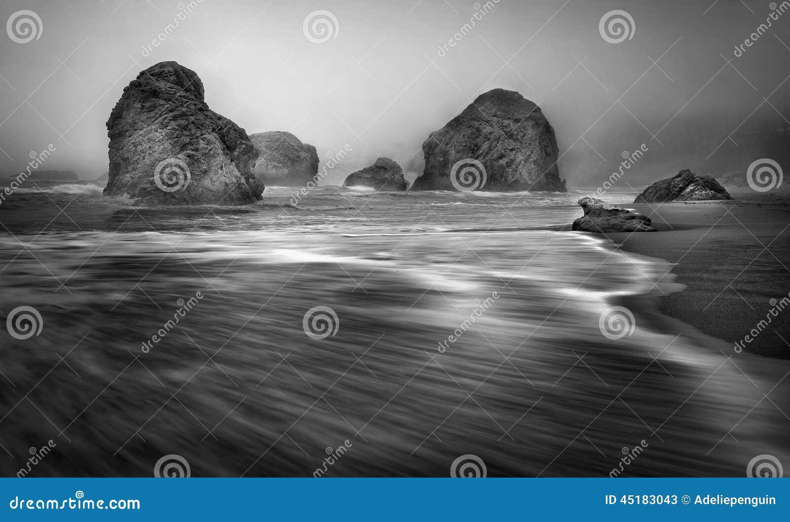 Morze sterty, Mgłowy Oregon wybrzeże