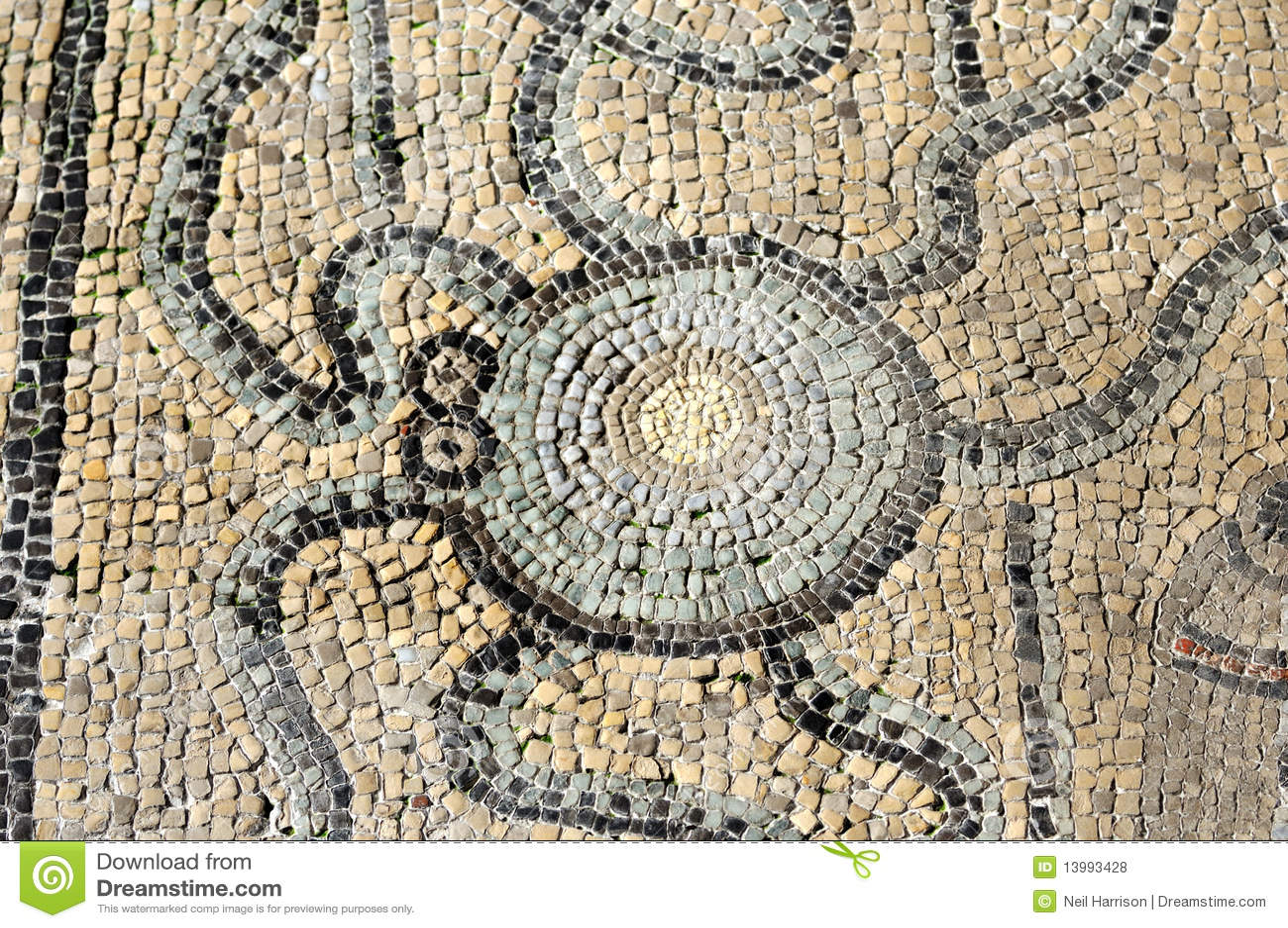Mosaico romano di un polipo