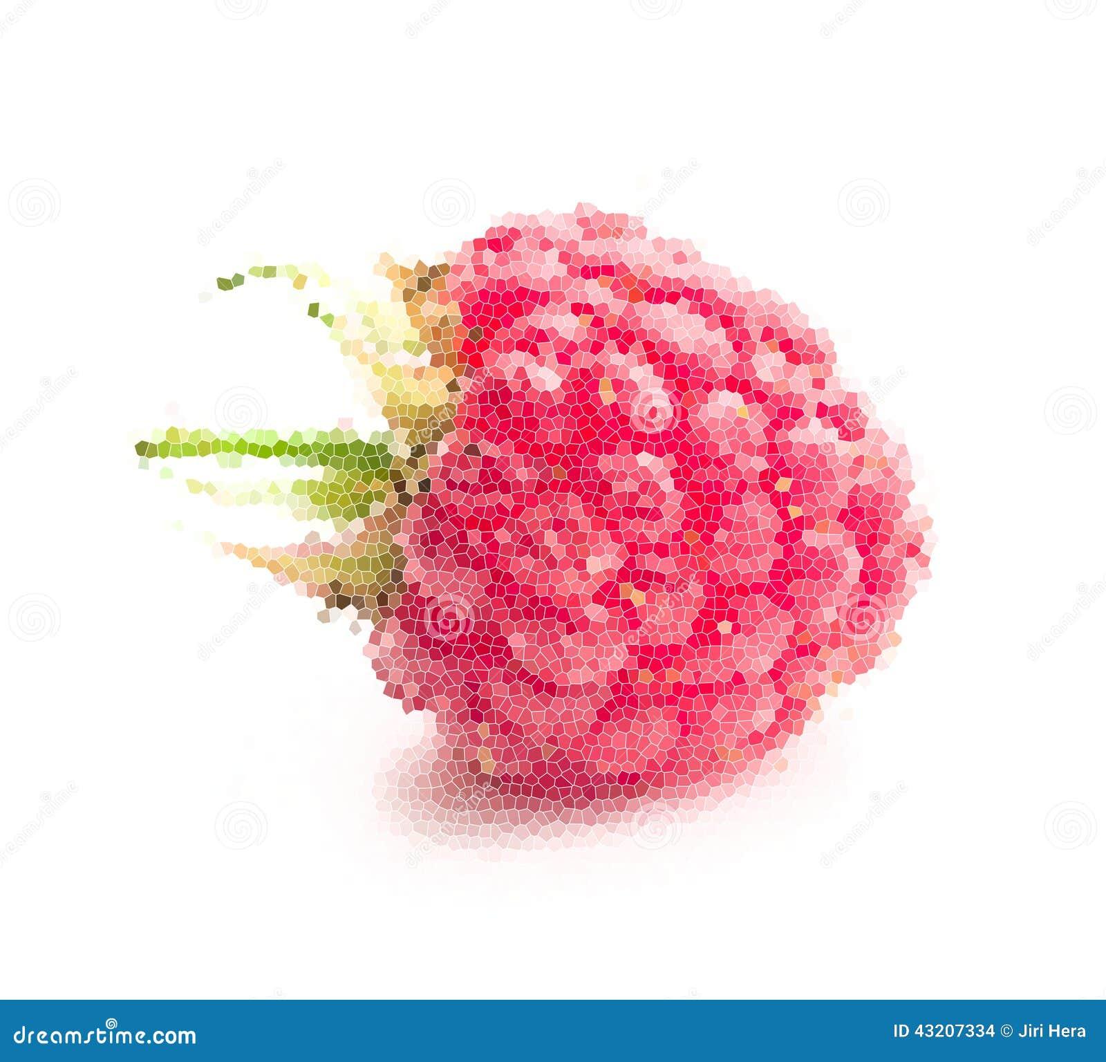 Download Mosaisk frukt hallon arkivfoto. Bild av efterrätt, nytt - 43207334
