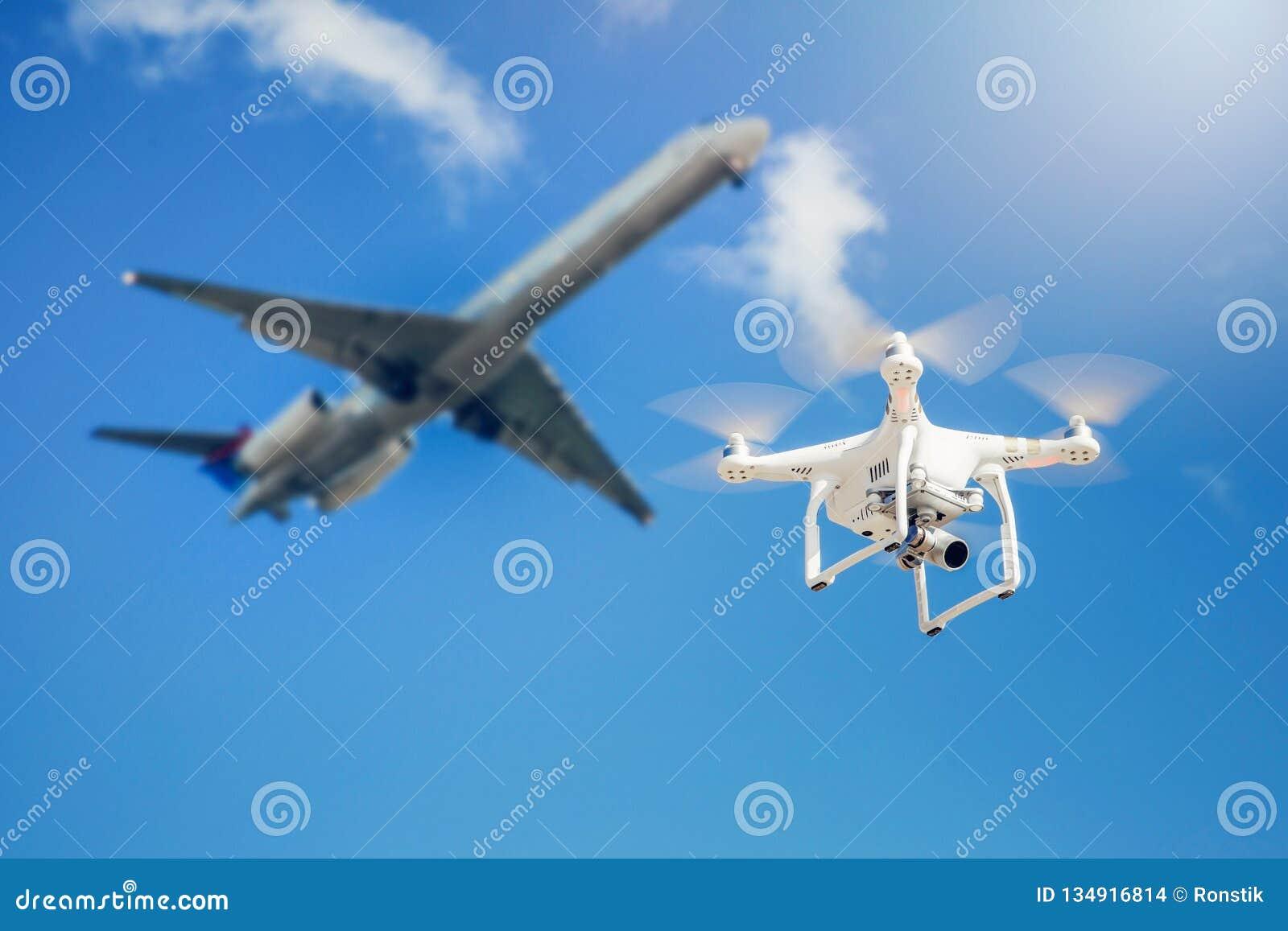 Mosca del abejón cerca del aeroplano comercial