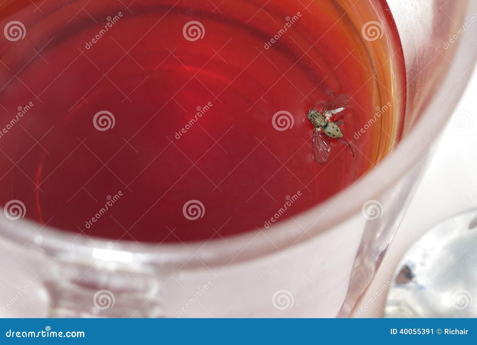 Mosca en bebida