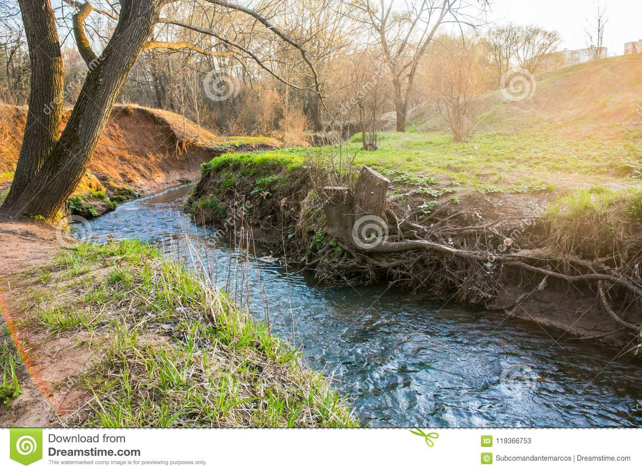 A Calm Flow Of The Ramenka Rivulet  Energizing Spring