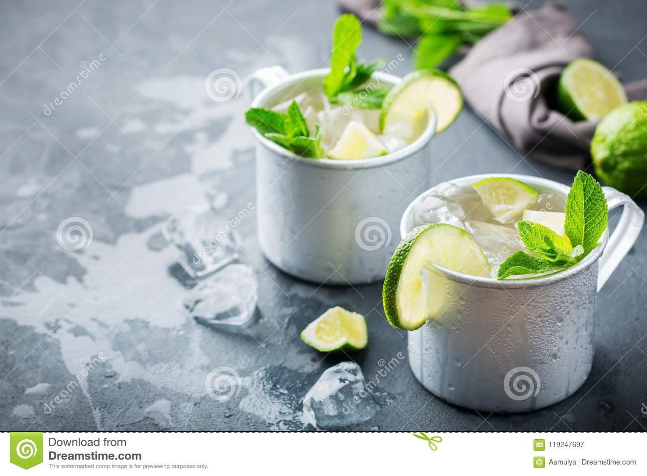 Moscow Mule Cocktail With Vodka Ginger Beer Lime And Mint Stock Image Image Of Moscow Sliced 119247697