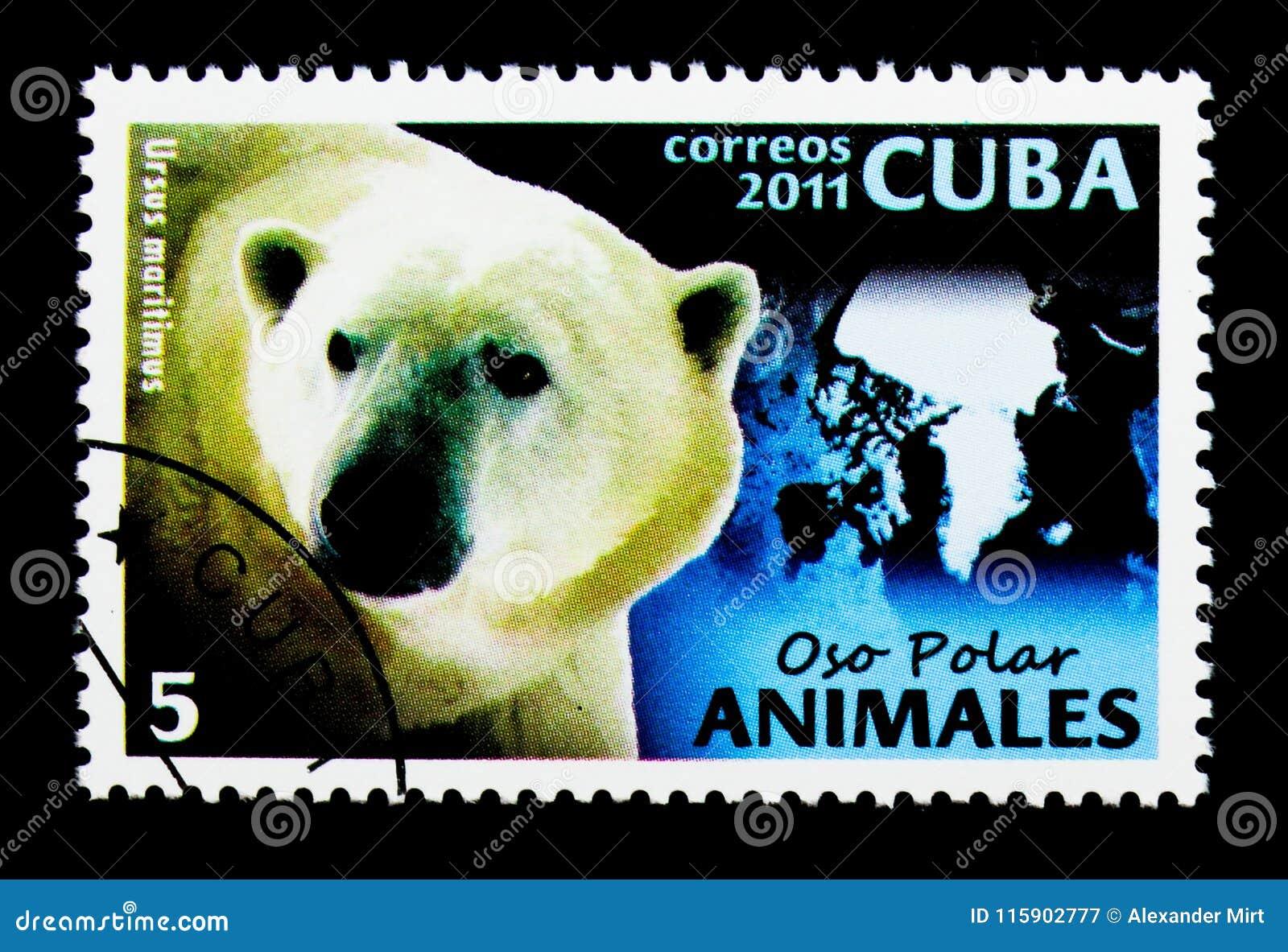 Polar Bear (Ursus maritimus), Fauna serie, circa 2011