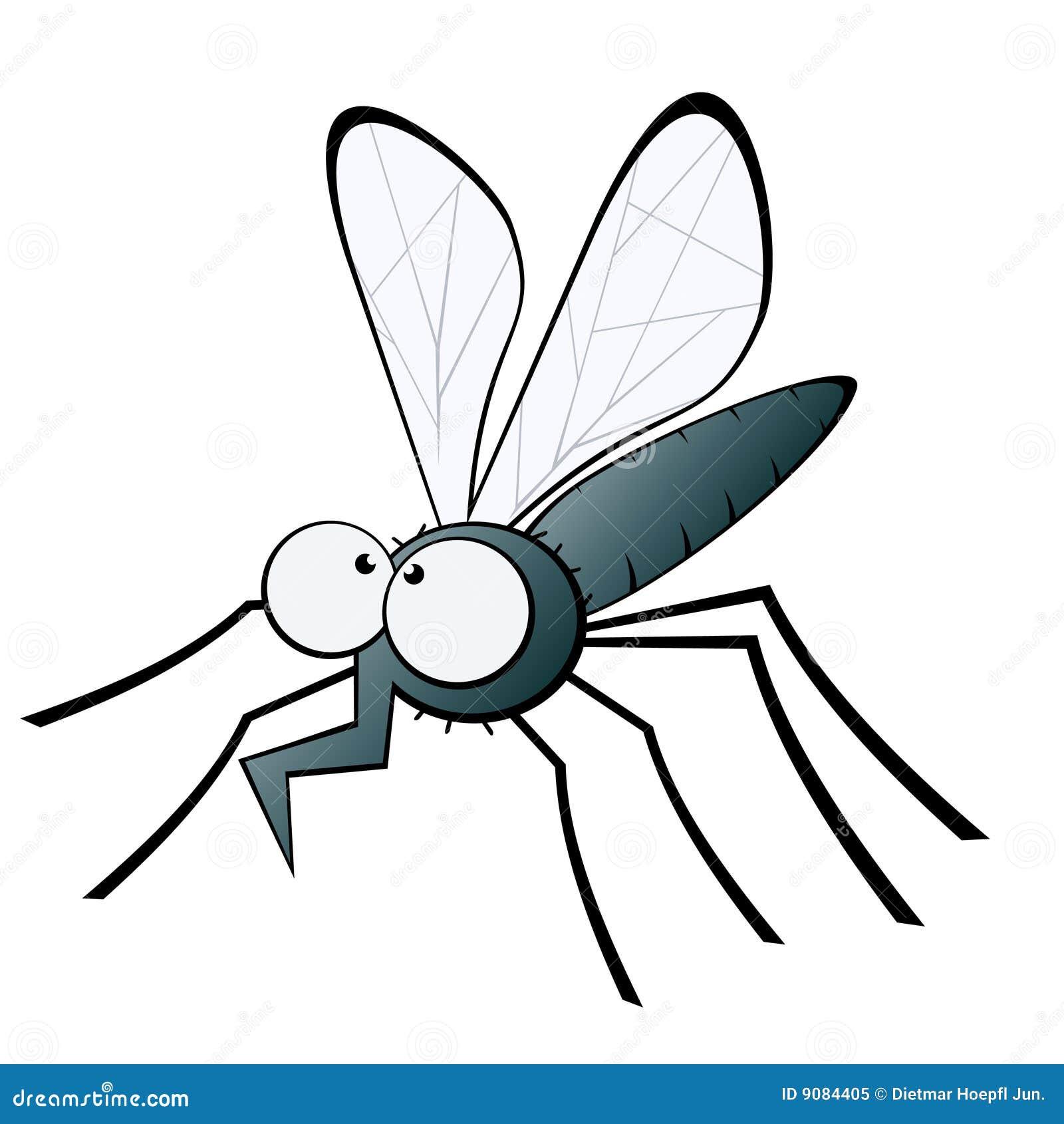Moskito mit verbogener Proboscis