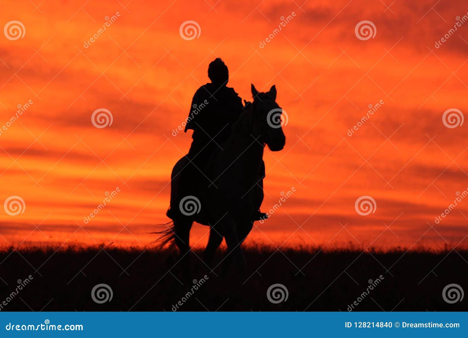 Mosotho Mężczyzna Zdjęcie Stock Obraz Złożonej Z Koń