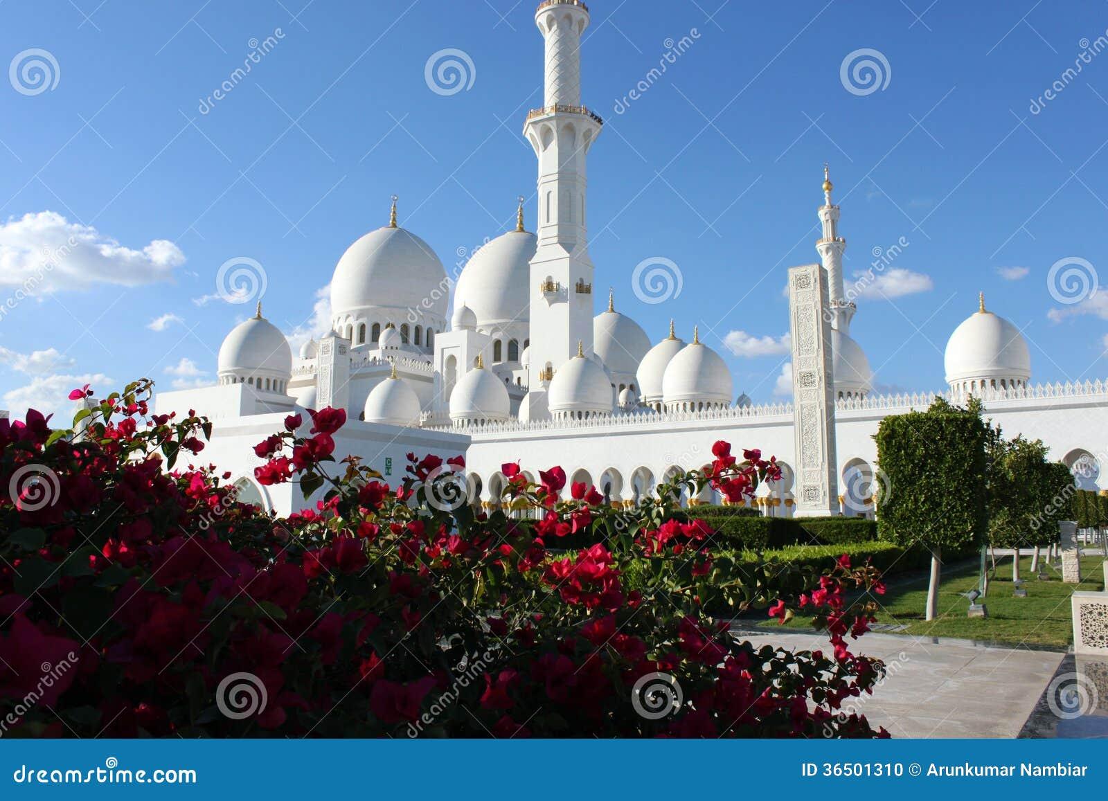 Mosquée grande en Abu Dhabi