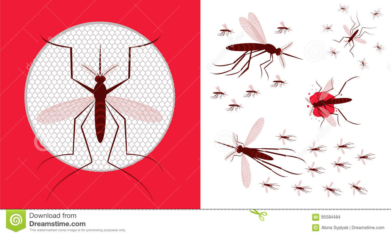 Mosquito Net Icon. Flock Of Gnat Stock Vector - Illustration of body ...