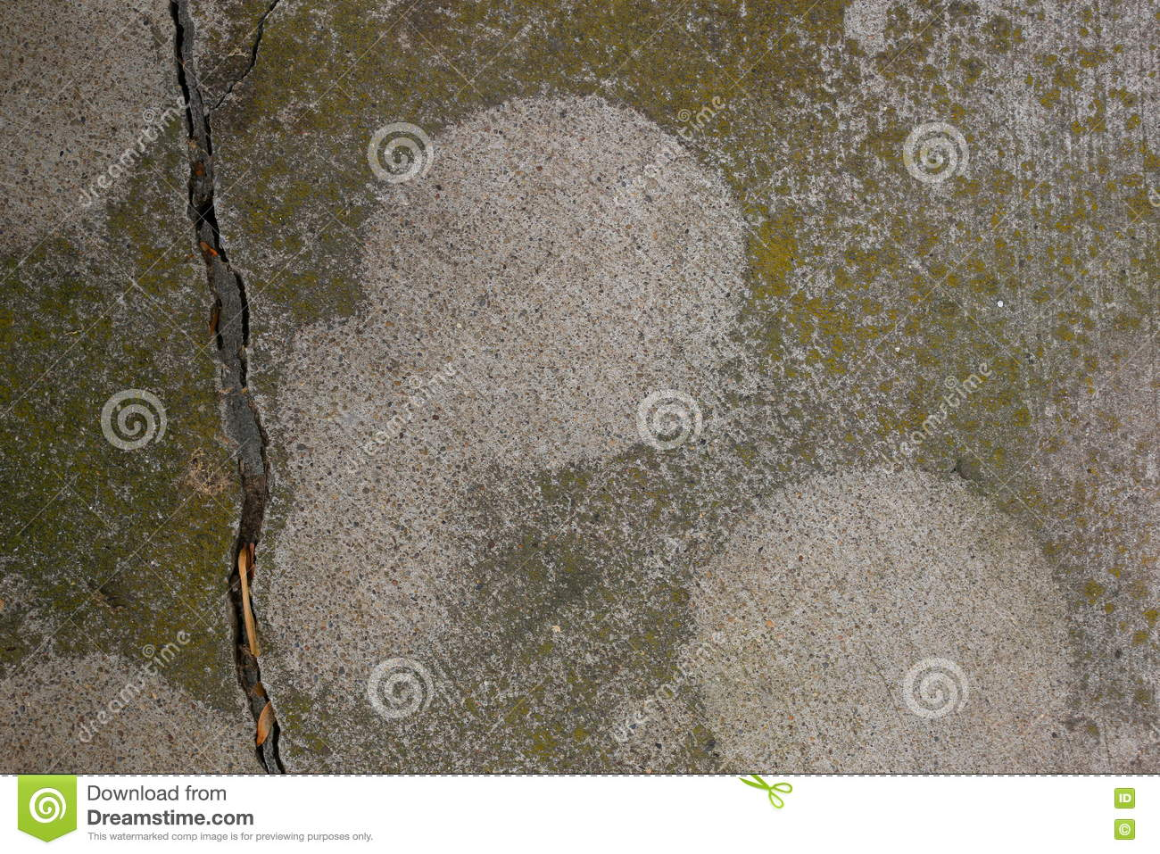 Moss Covered Cement