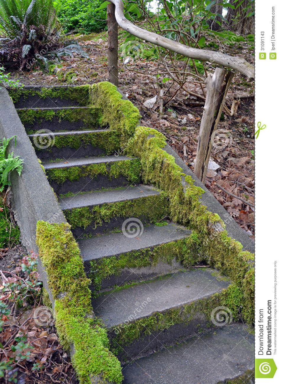 Moss Covered Stairs In Garden Stock Photos Image 31091143